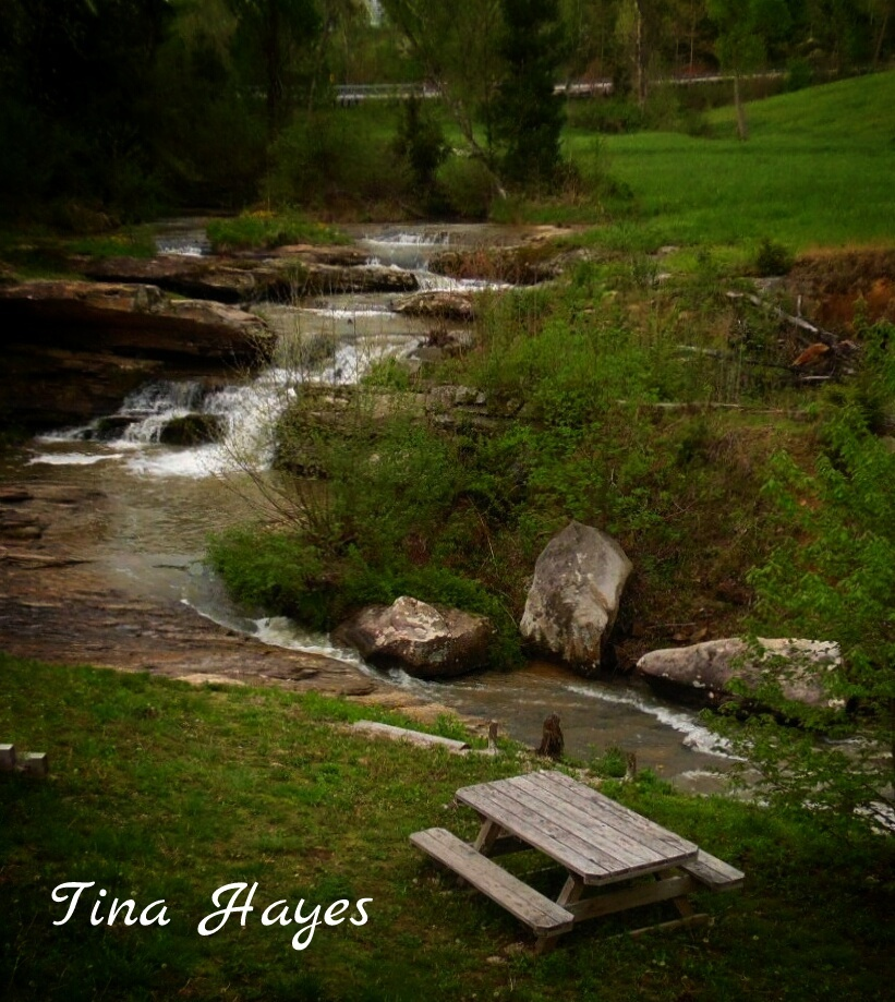 Untitled by Tina Hayes
