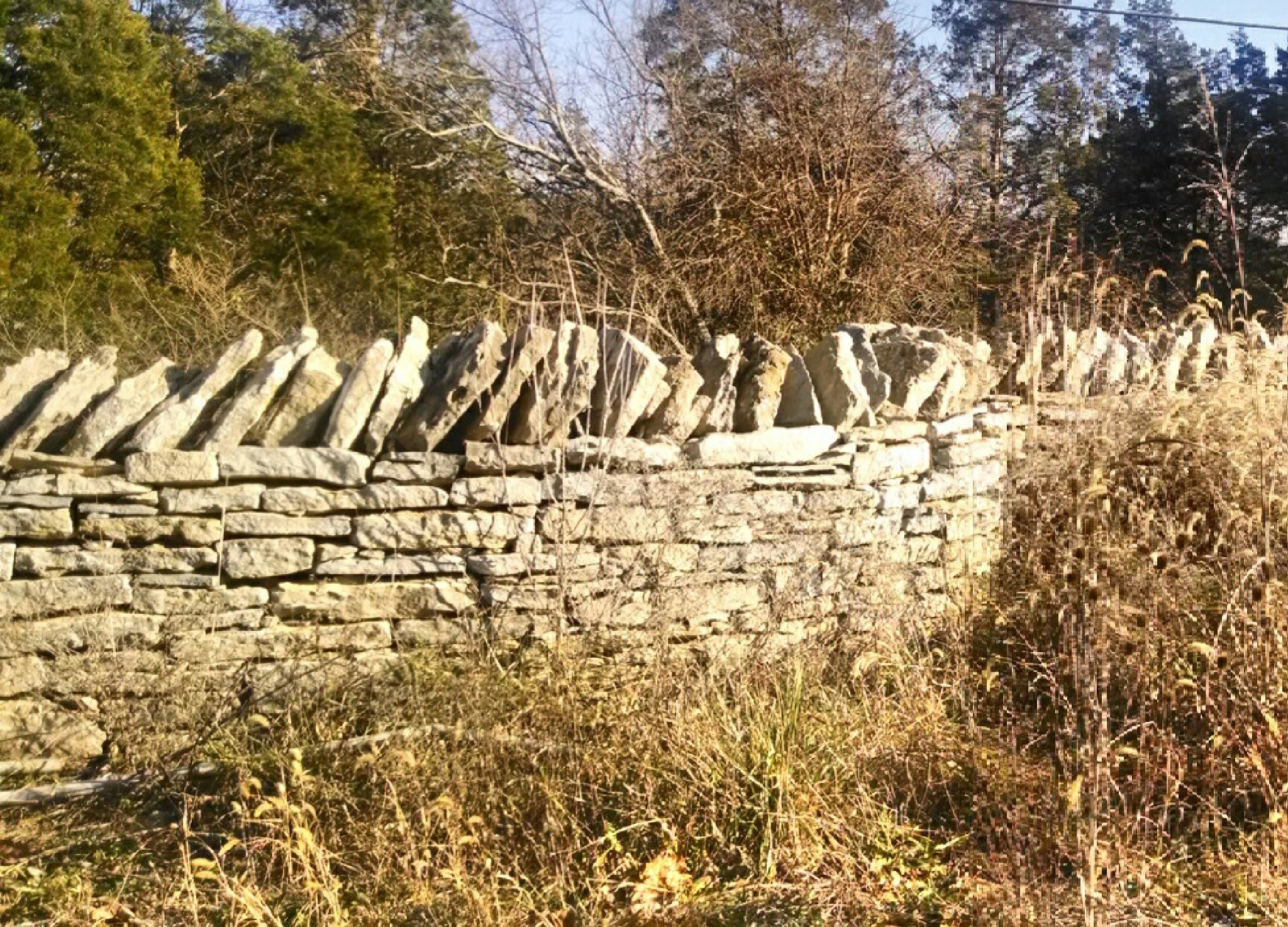 Old stone fencing, done in late 1700s. by Tina Hayes