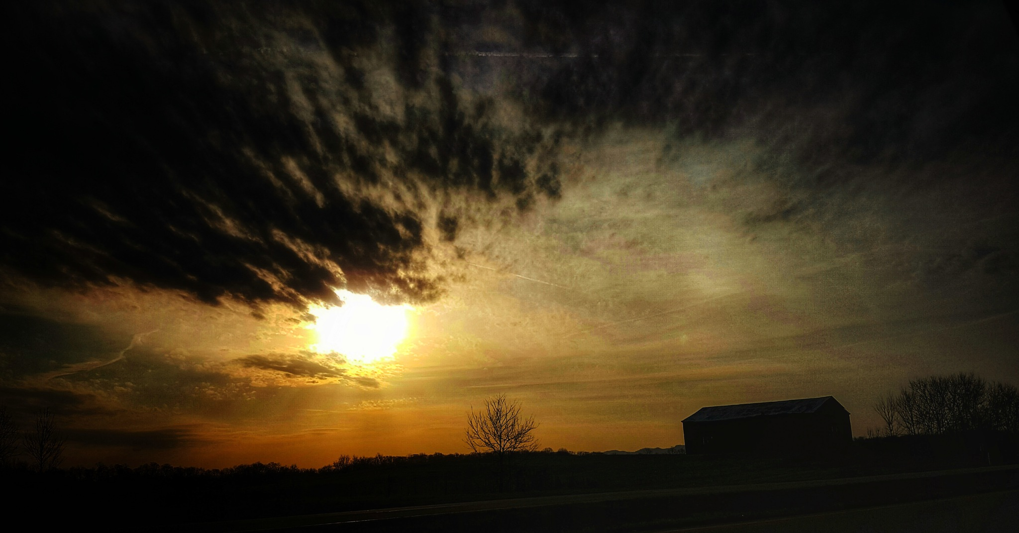 Morning Sun by Tina Hayes