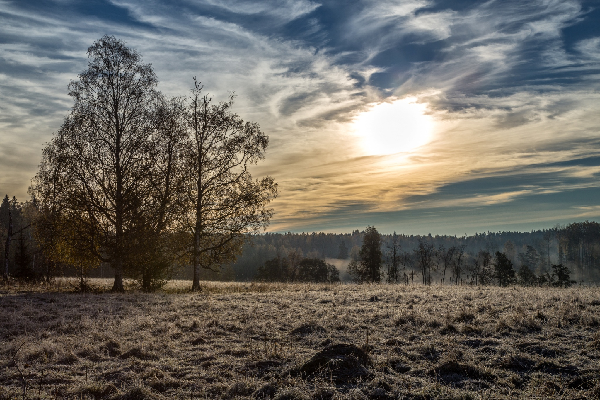 Early morning by Anders Hedlund