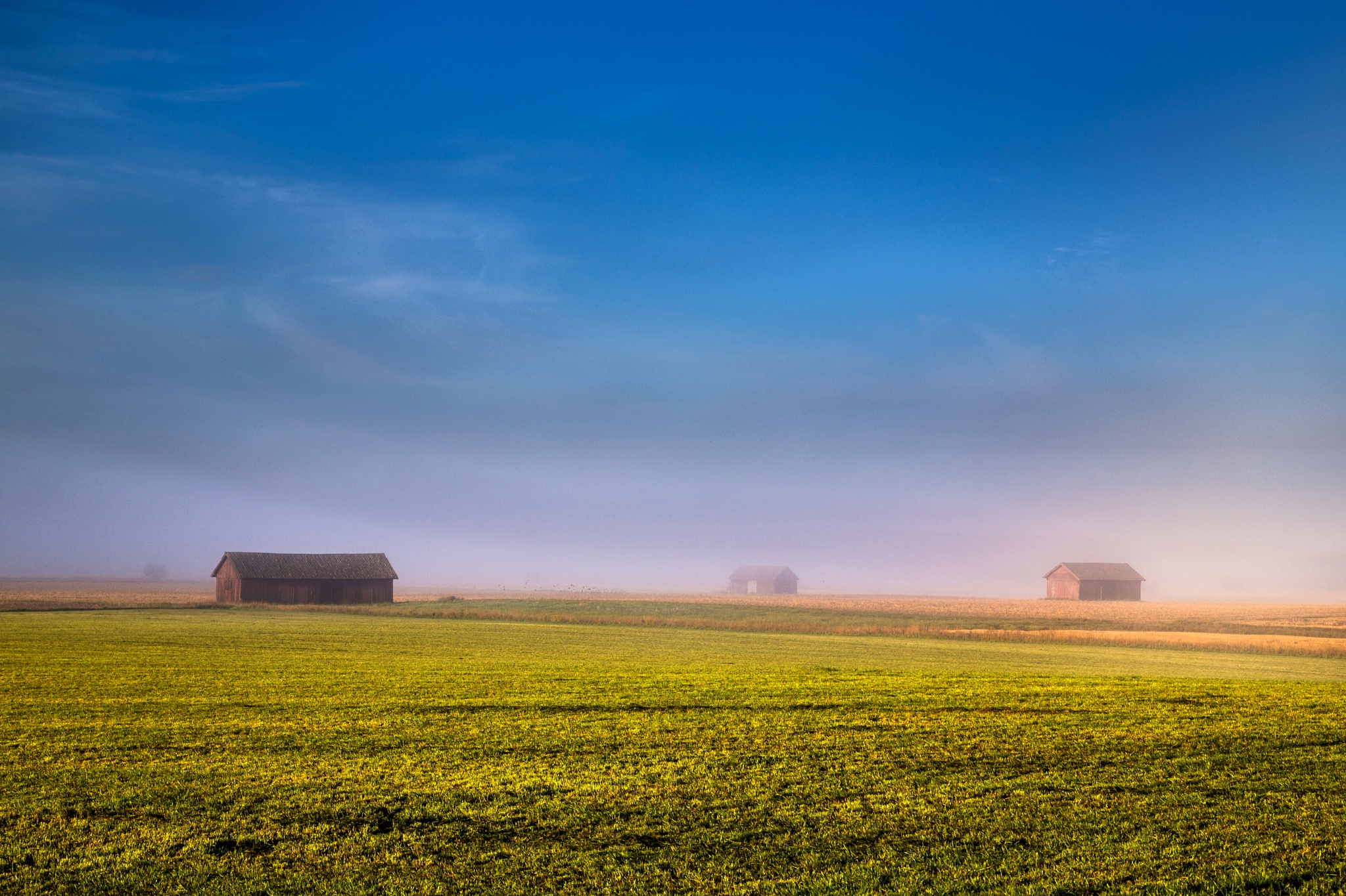 Morning by Anders Hedlund
