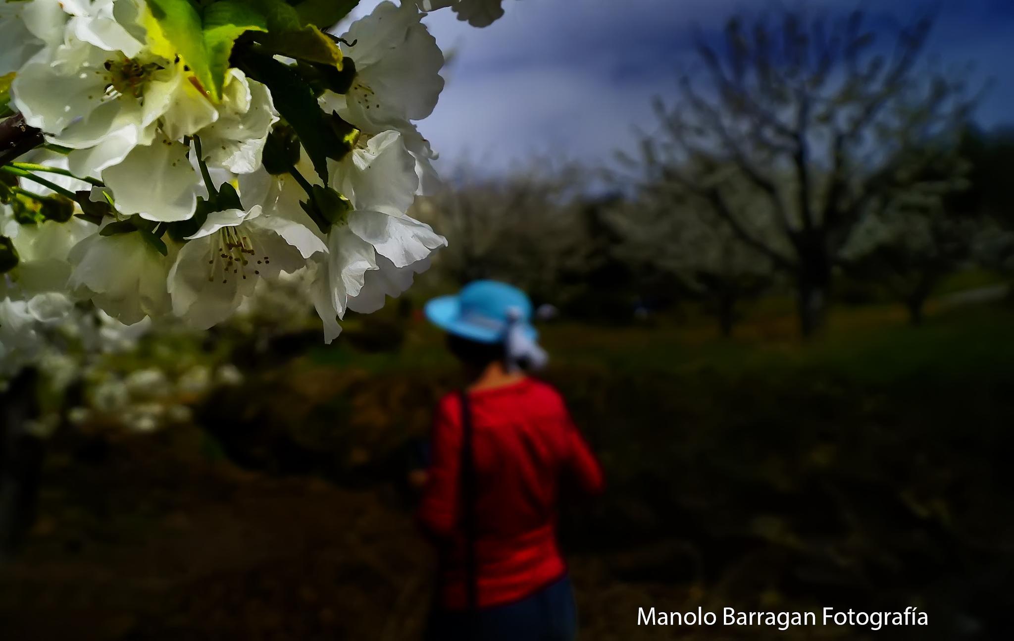 Untitled by Manolo Barragan Fotografía