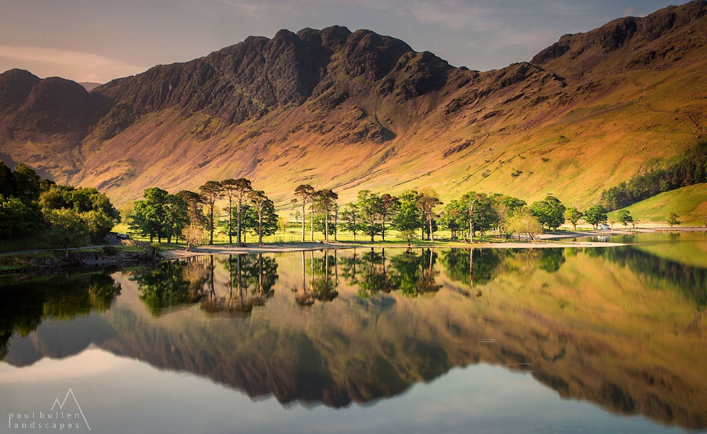 Buttermere Pines by PaulBullenLandscapes