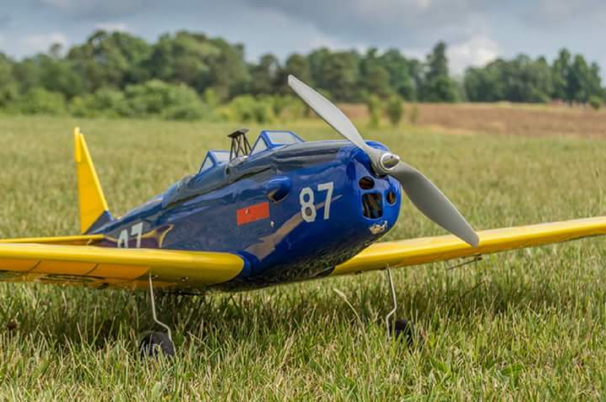 RC airplanes  by volusia1969