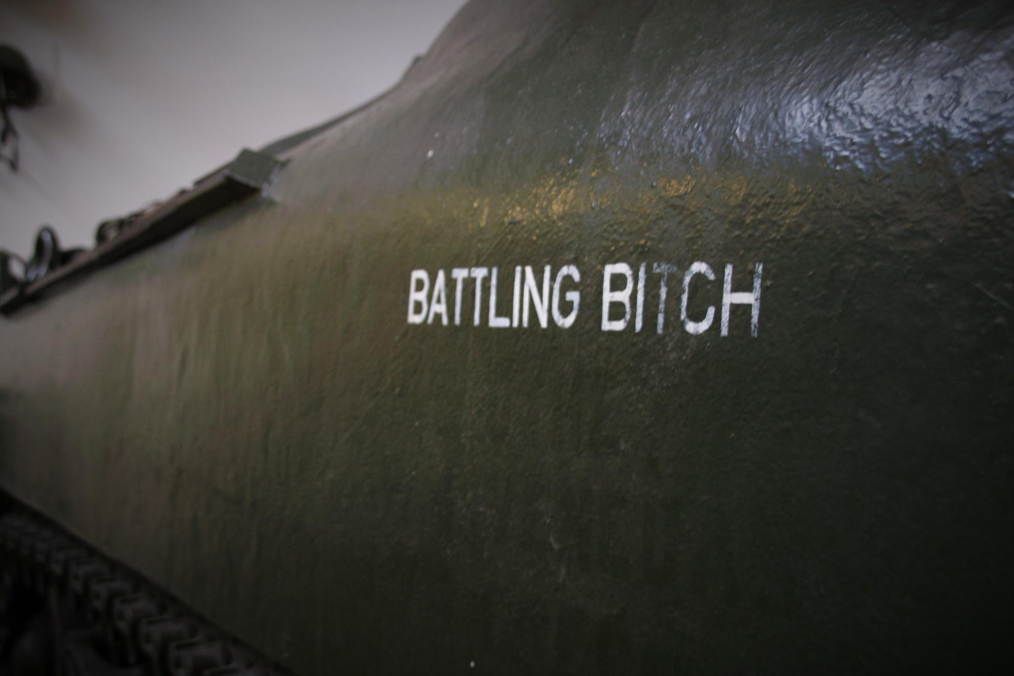 Battling bitch by Sovrano