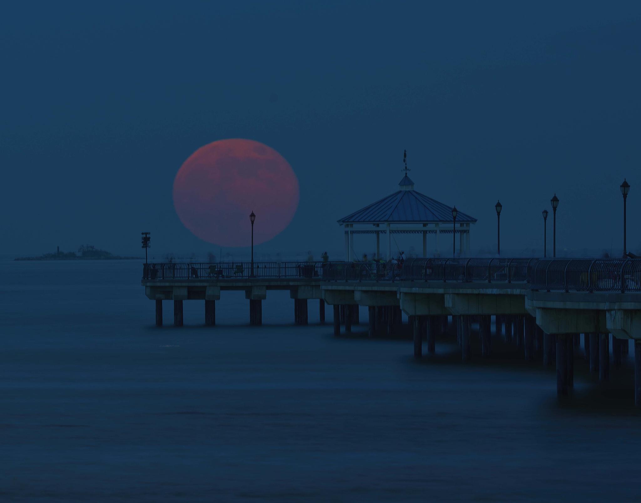 Full Moon Rising by Scott Allen