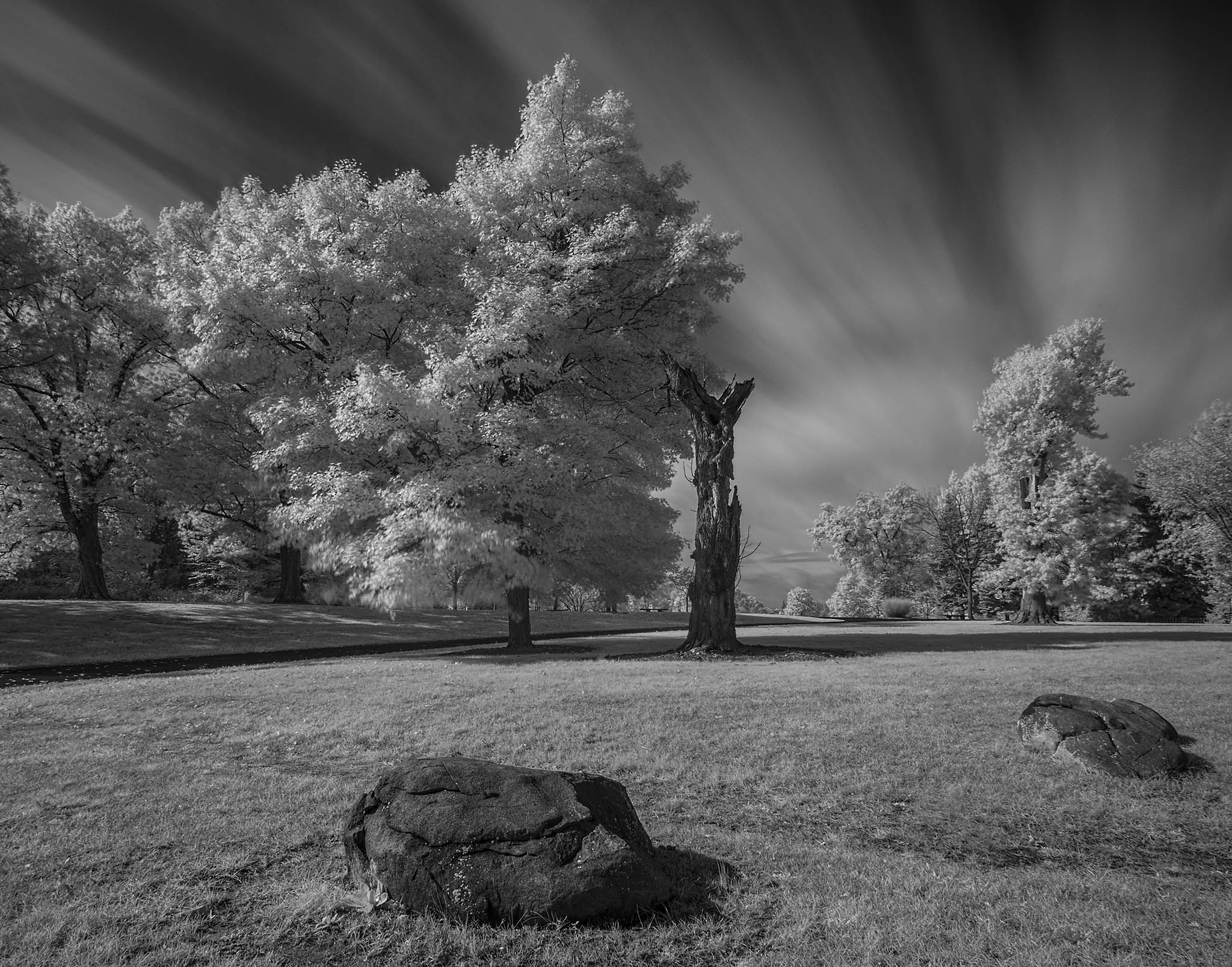 Follow to the Horizon by Scott Allen