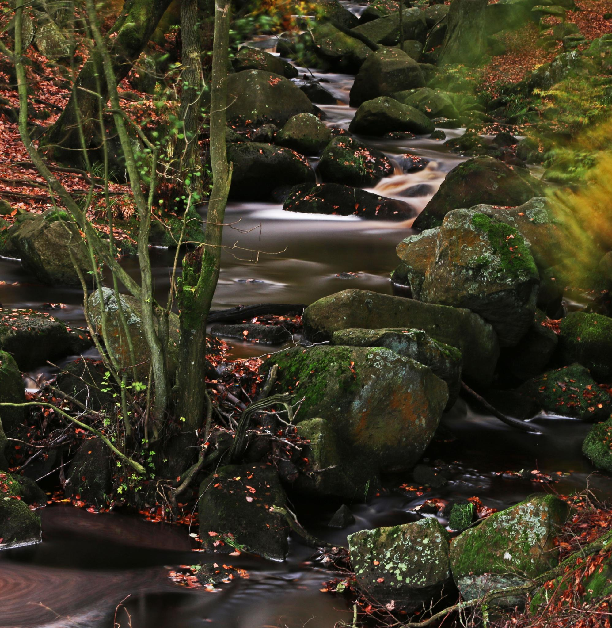 padley gorge last time by peter roberts