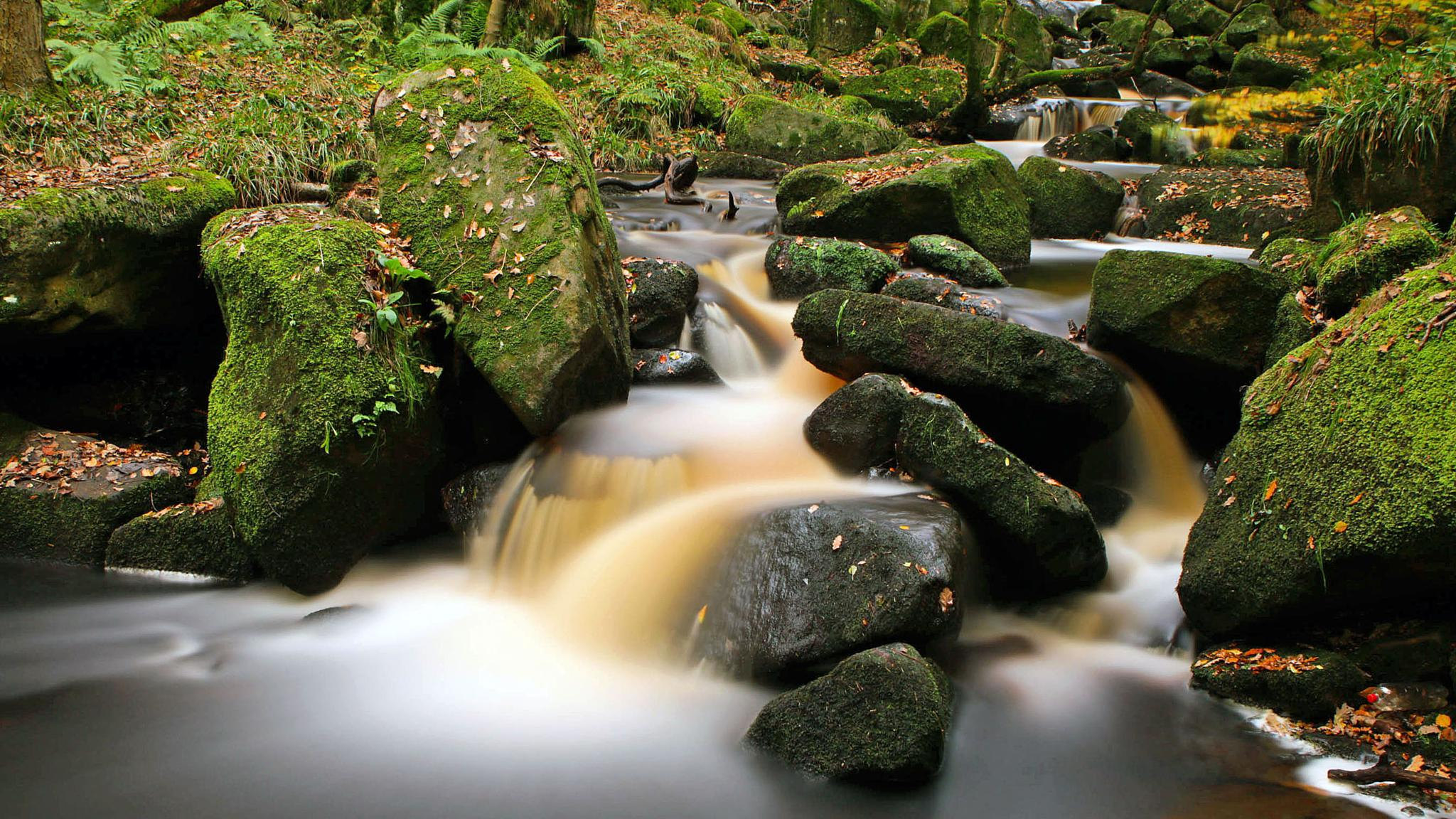 padley gorge yet again by peter roberts