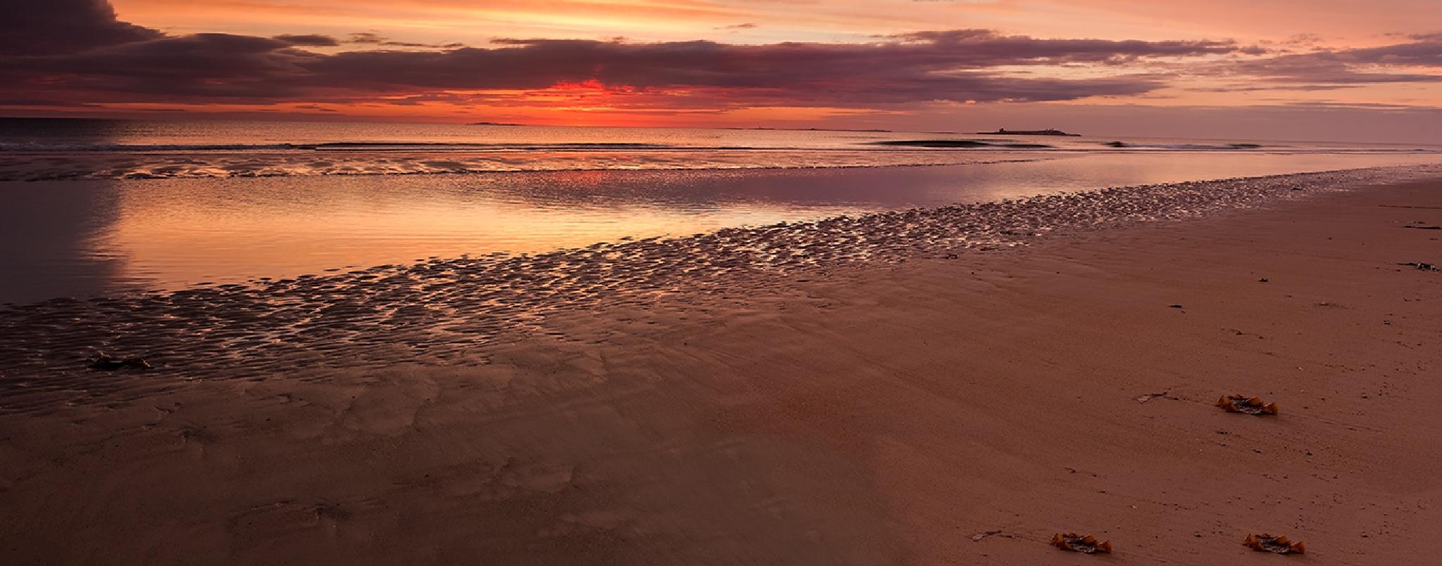 Beach Sunrise by AndyGough