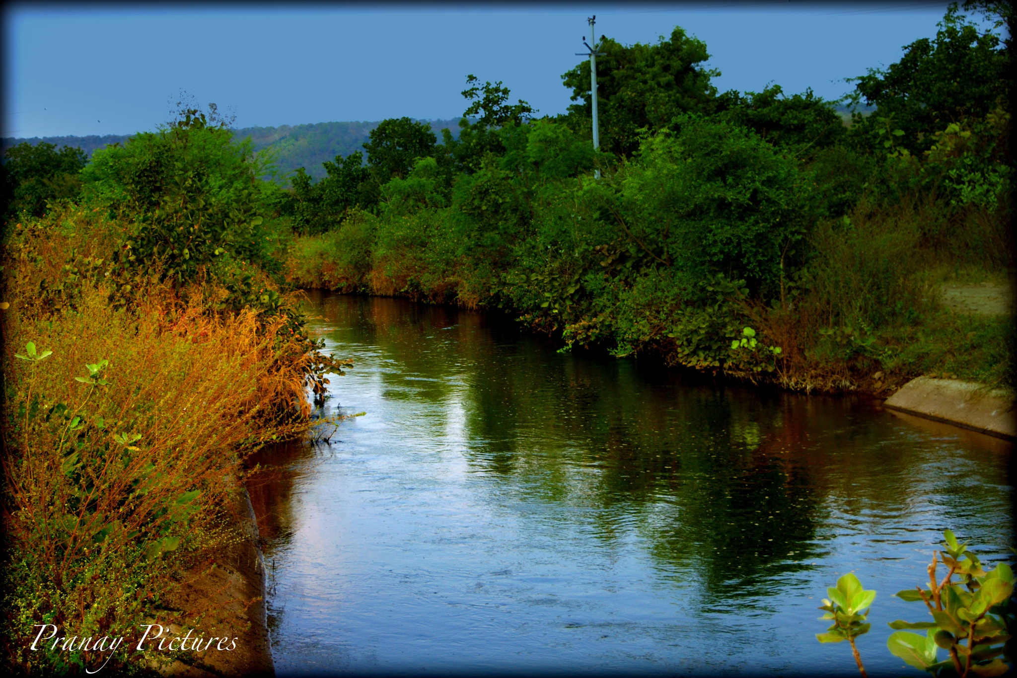Nature by Pranay Pictures