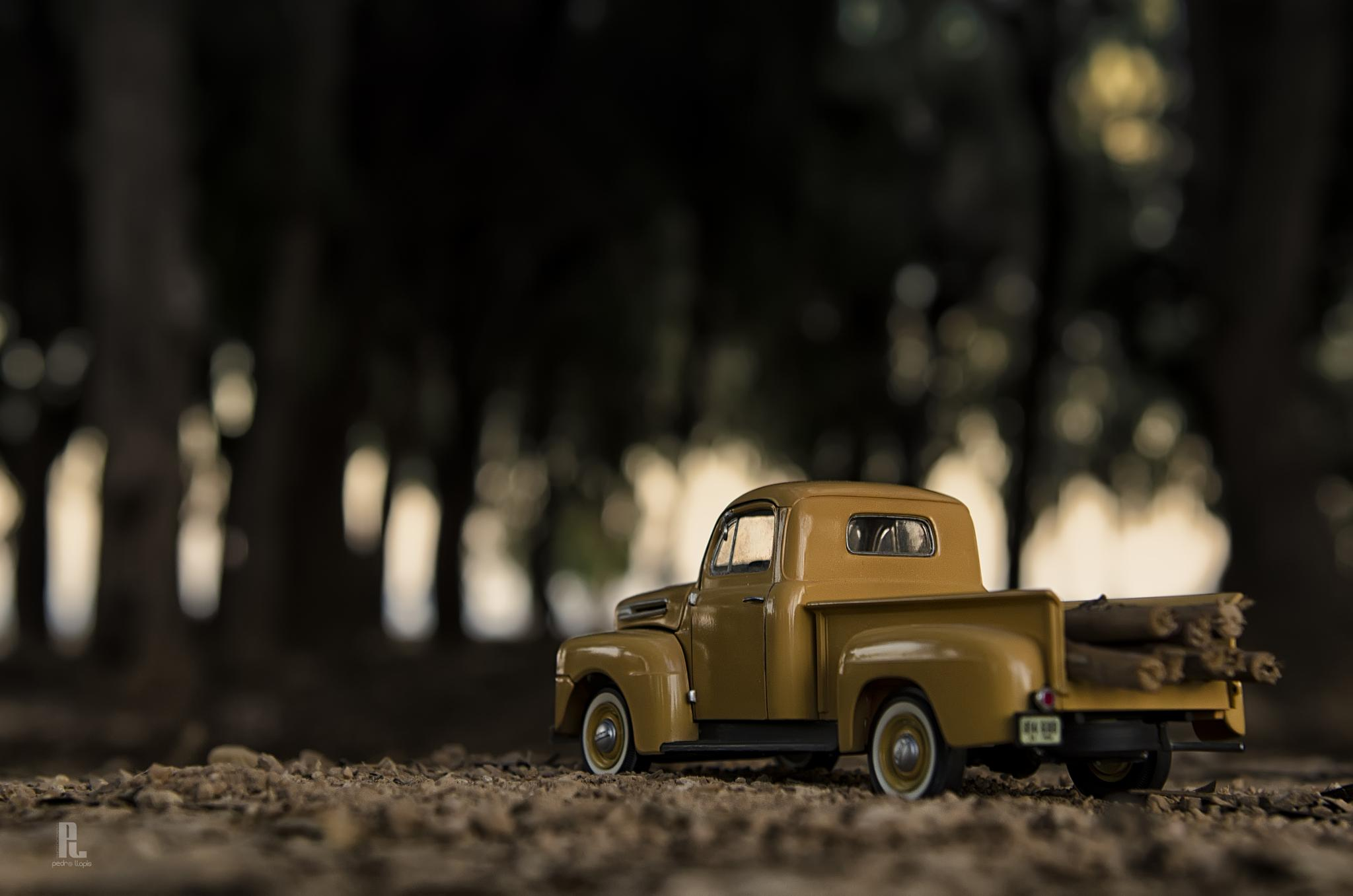 Ford by Pedro Llopis