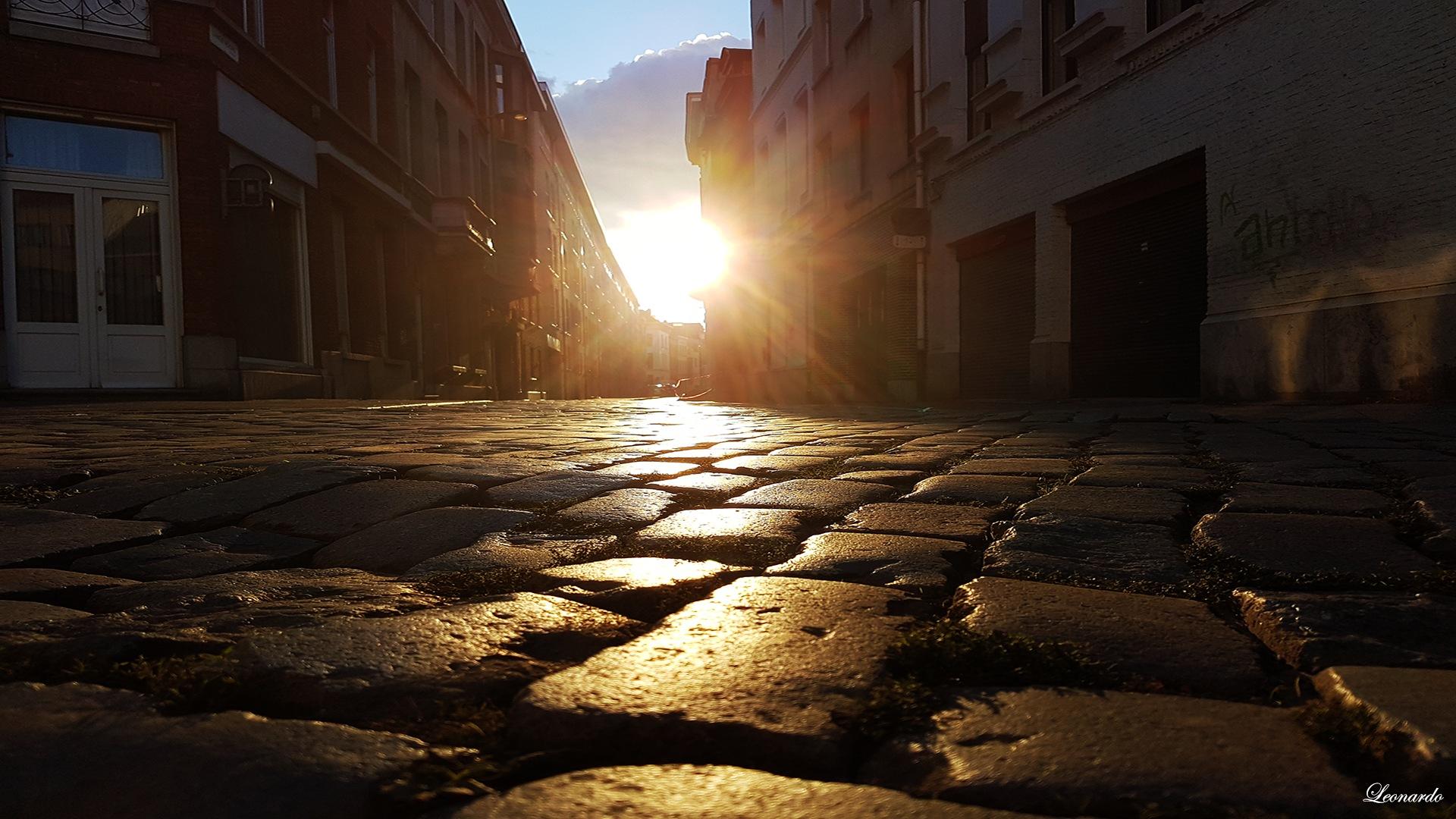 One morning in Antwerpen by gravinall