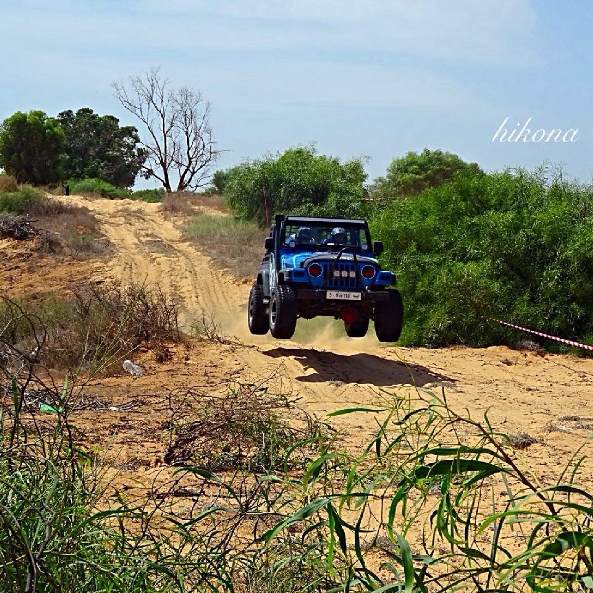 Rally jeep  by Hikona