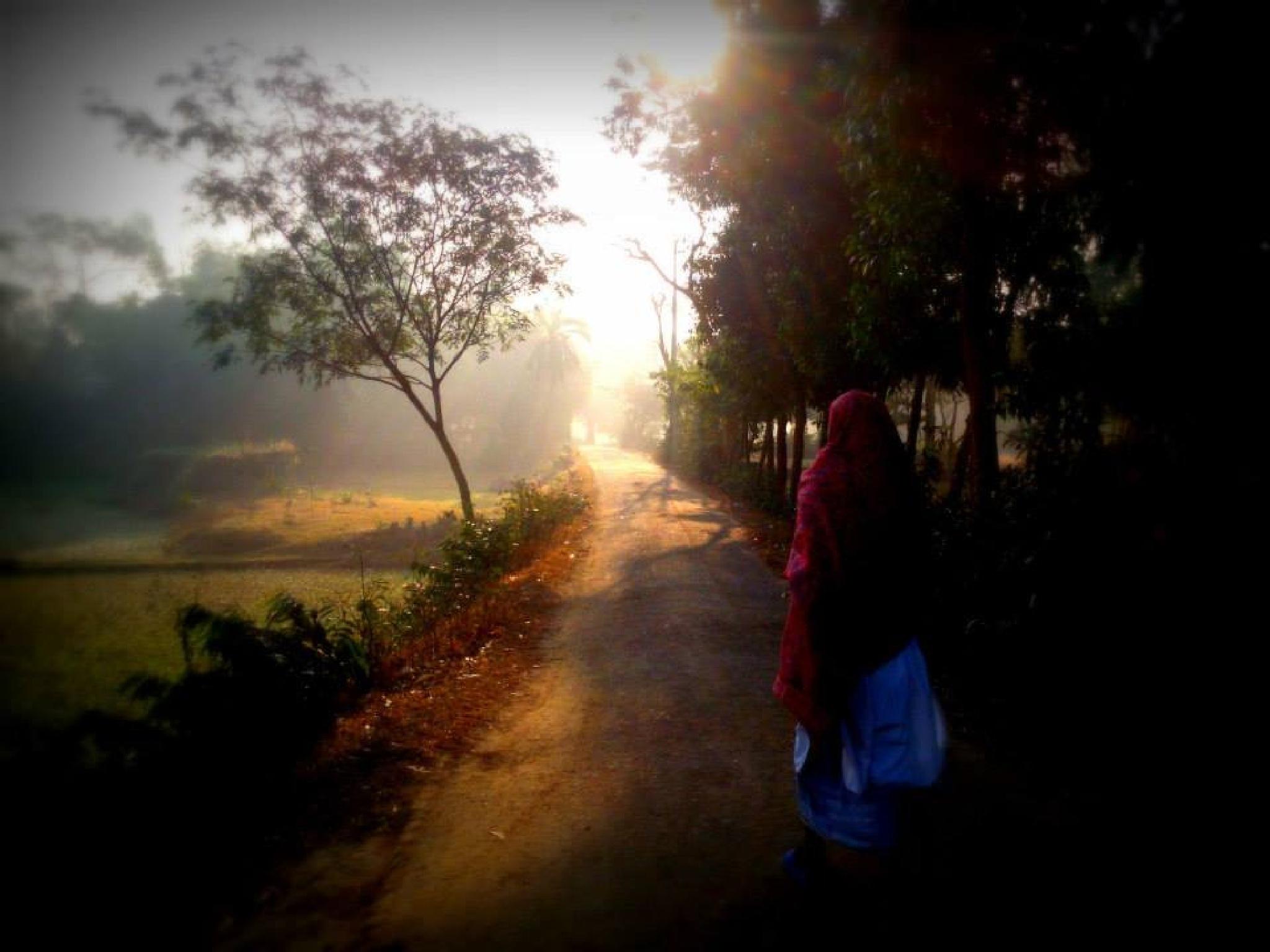 A foggy morning by Abdullah Ibn Ali