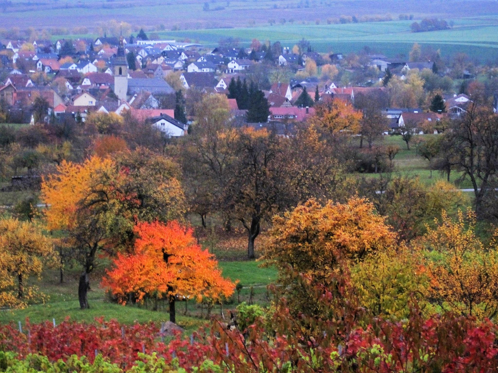 Photo in Landscape #best of astarot