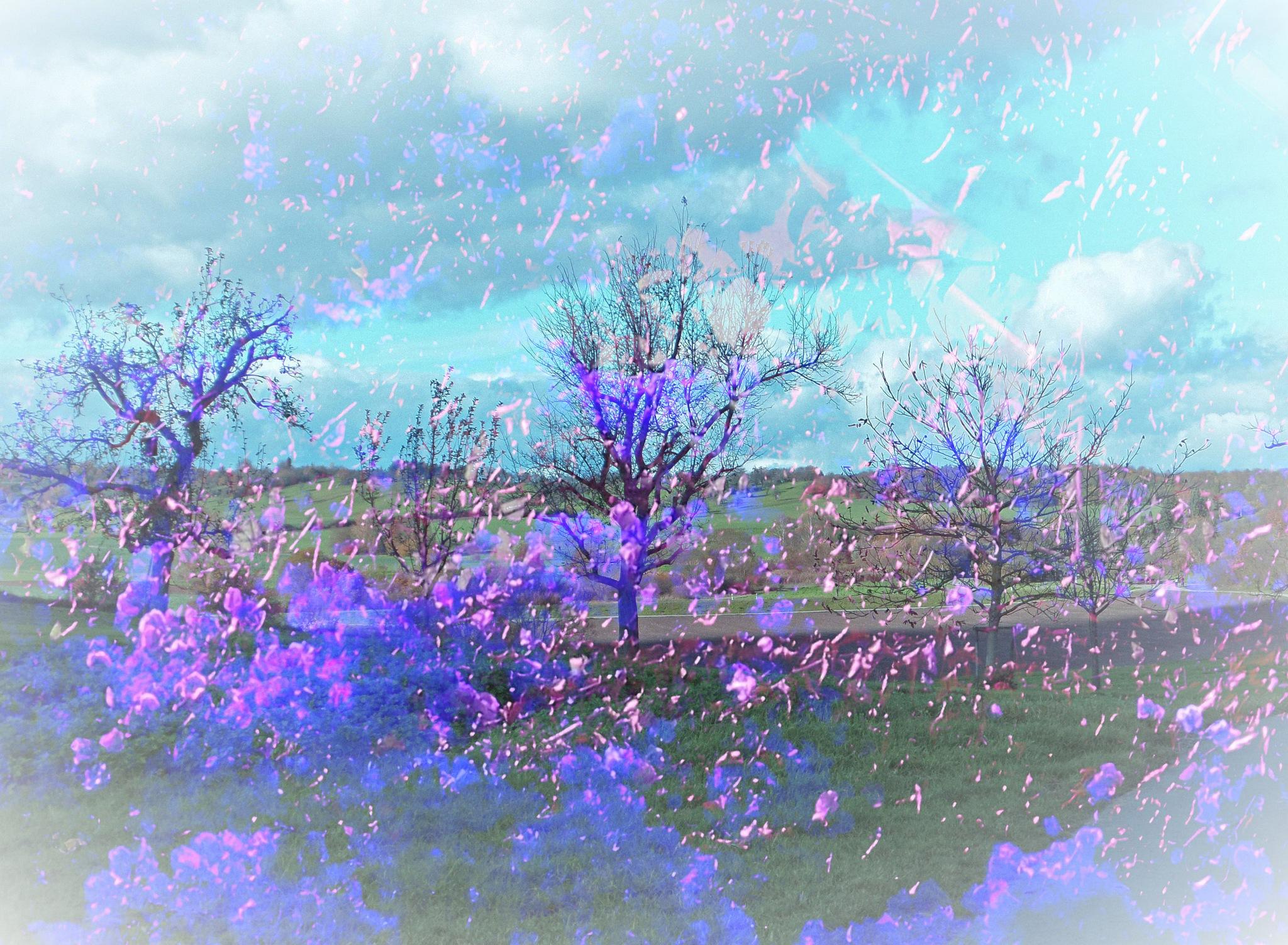 Spring Dream by astarot