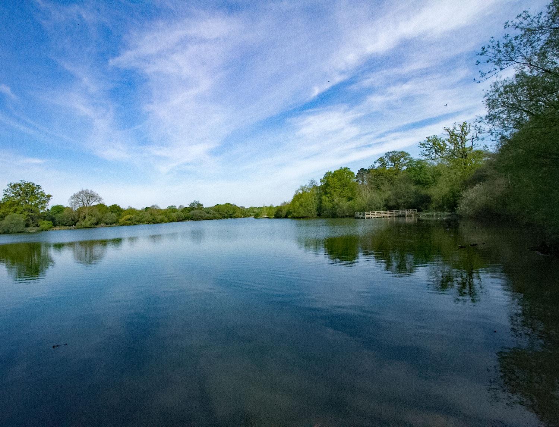 Hatfield Forest Lake by Karen