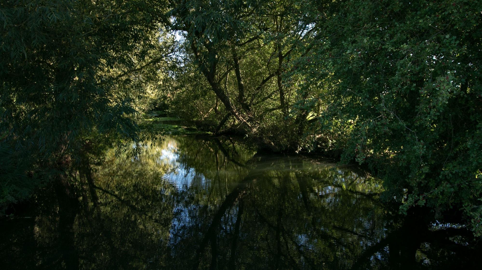 River View by Karen