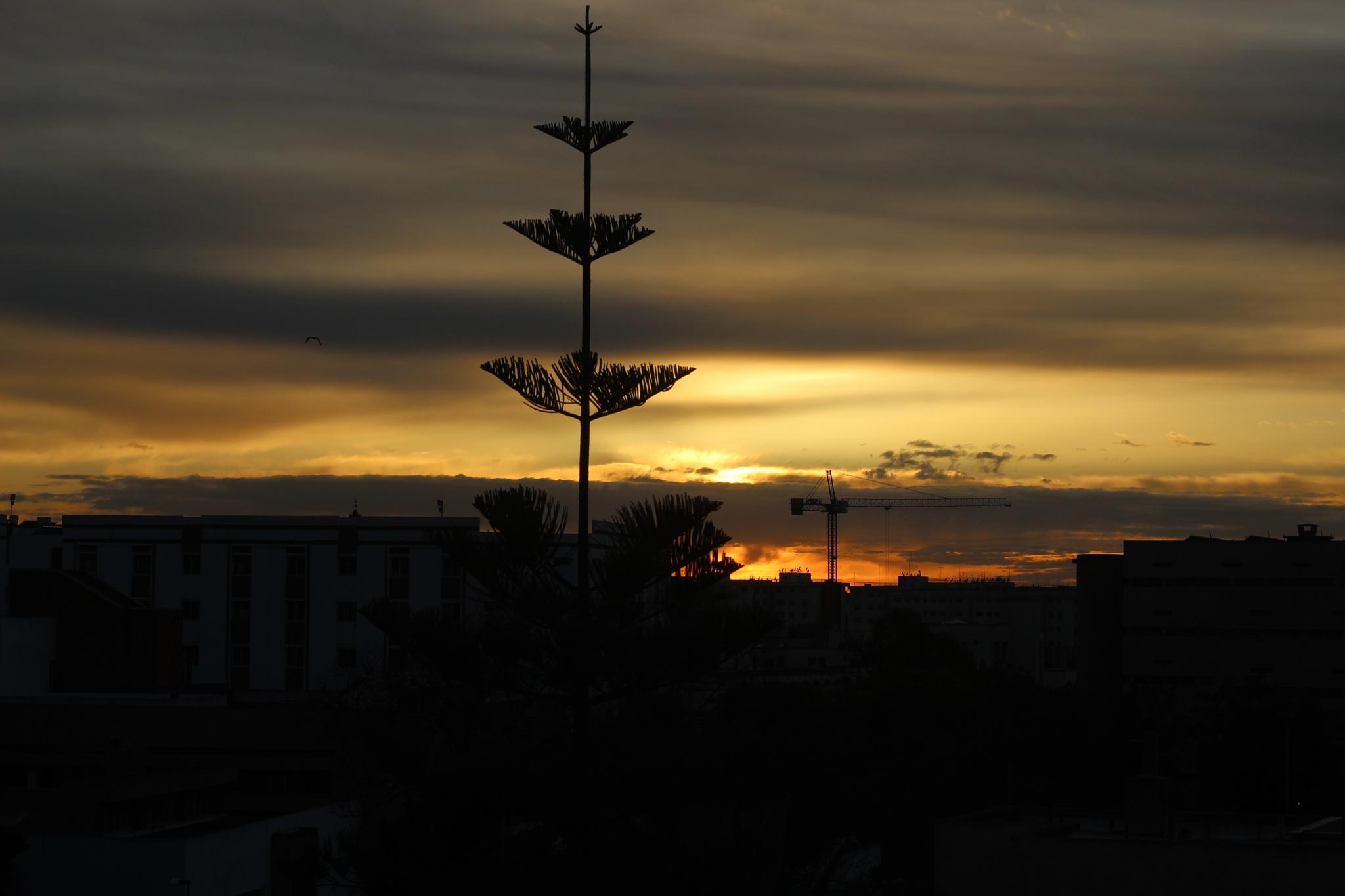 Gracious sunset by Soukaina