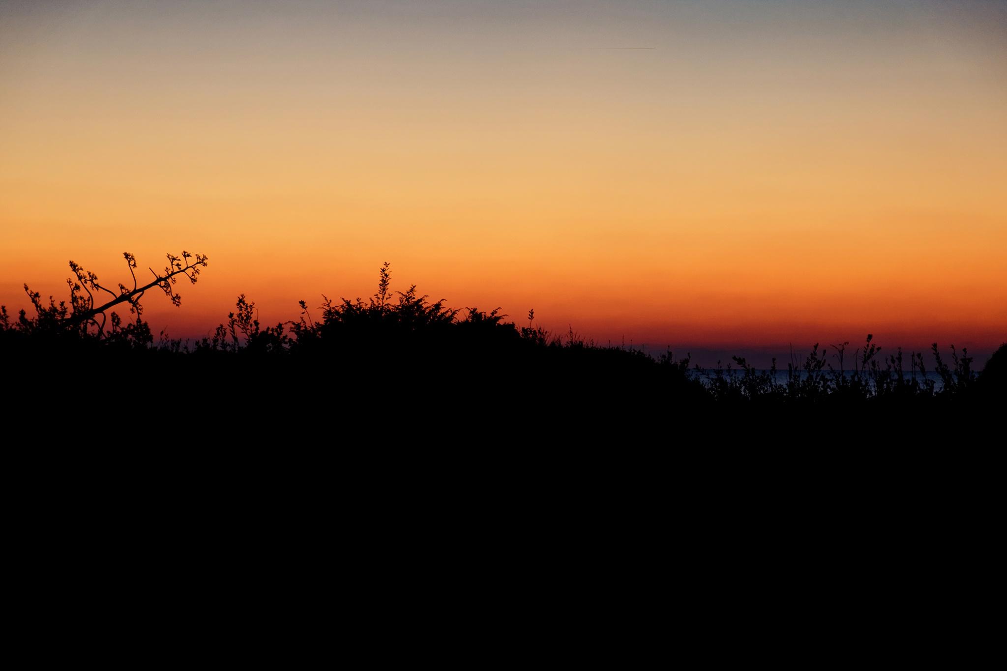 sunset on the dunes by Roberto Scordino