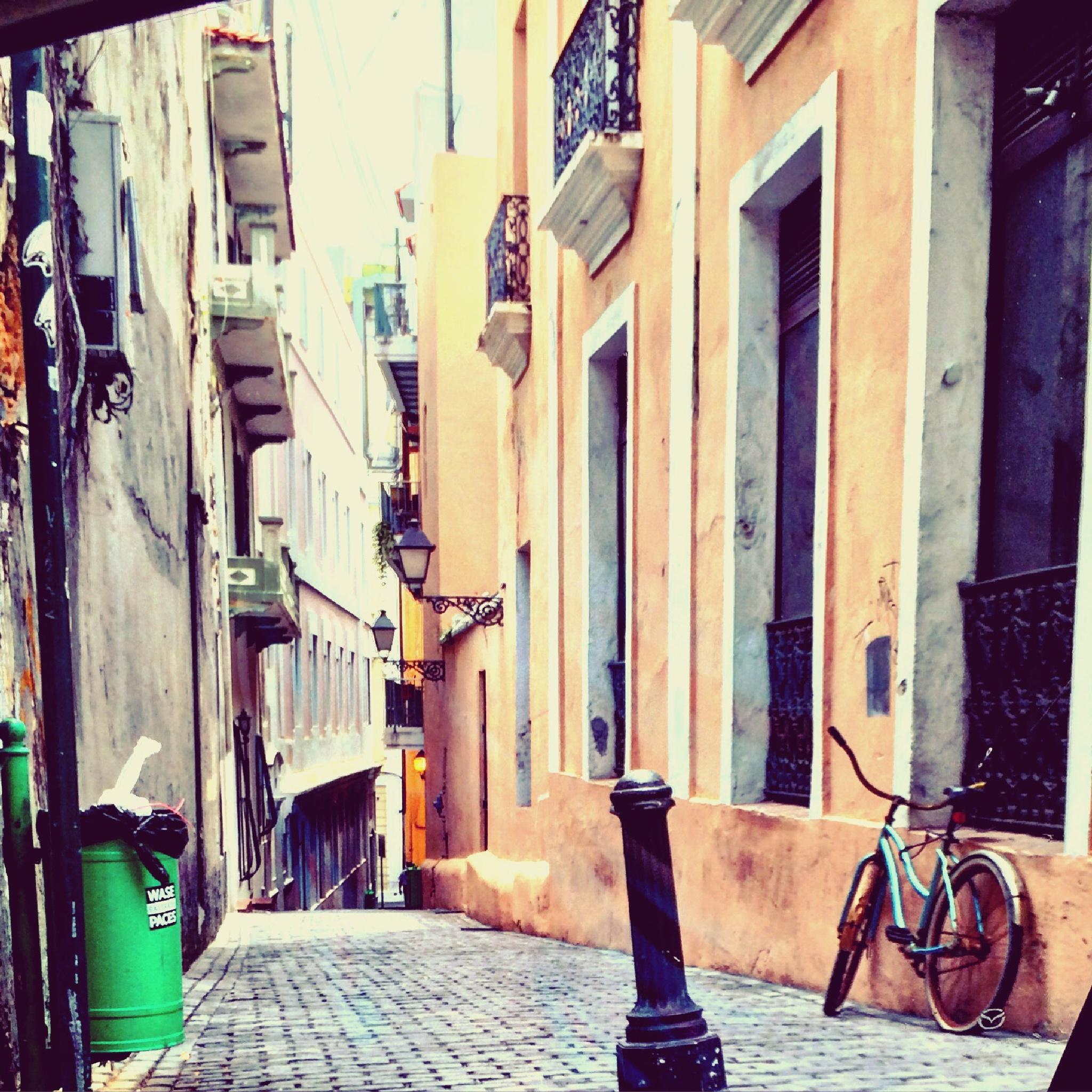 Alleyway  by Nilda64pr