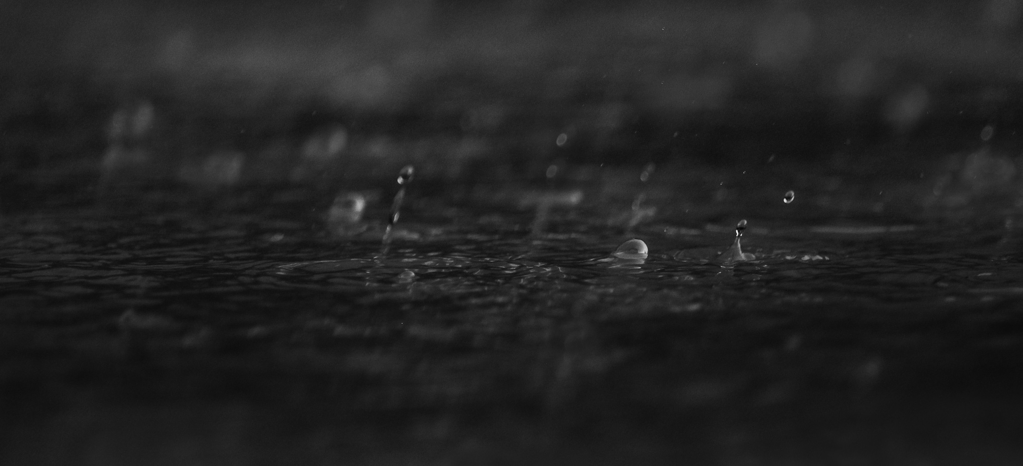Rain by Susan Pretorius