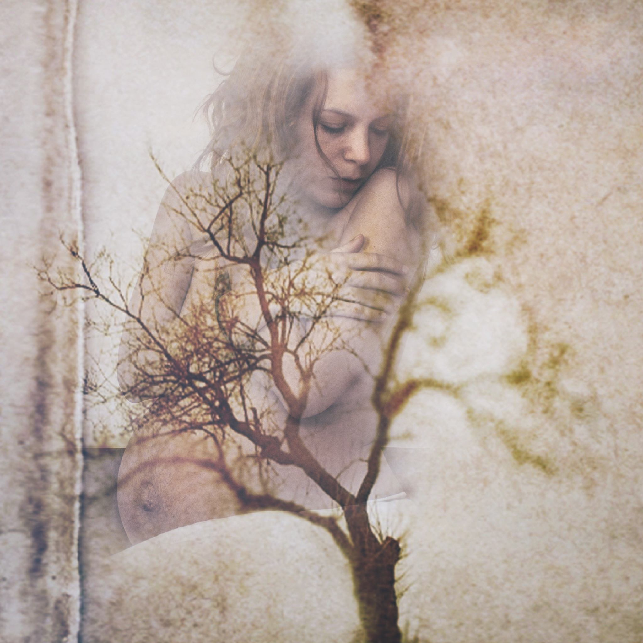 the.mother.tree by Dorotheya.Dim.Dim