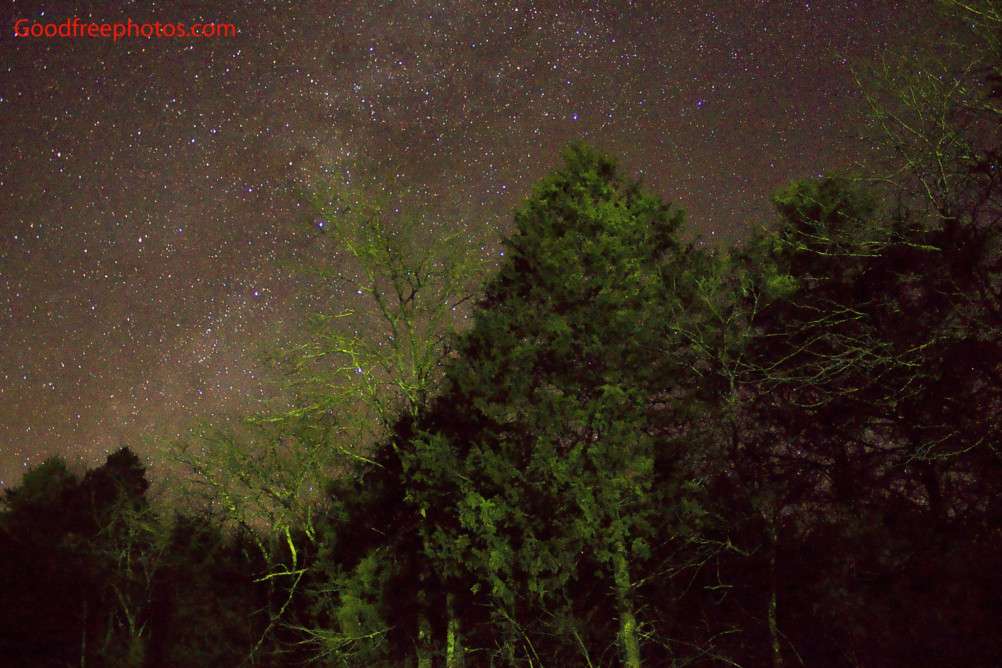 Stars over the trees at Ozark National Scenic Riverways by Archbob