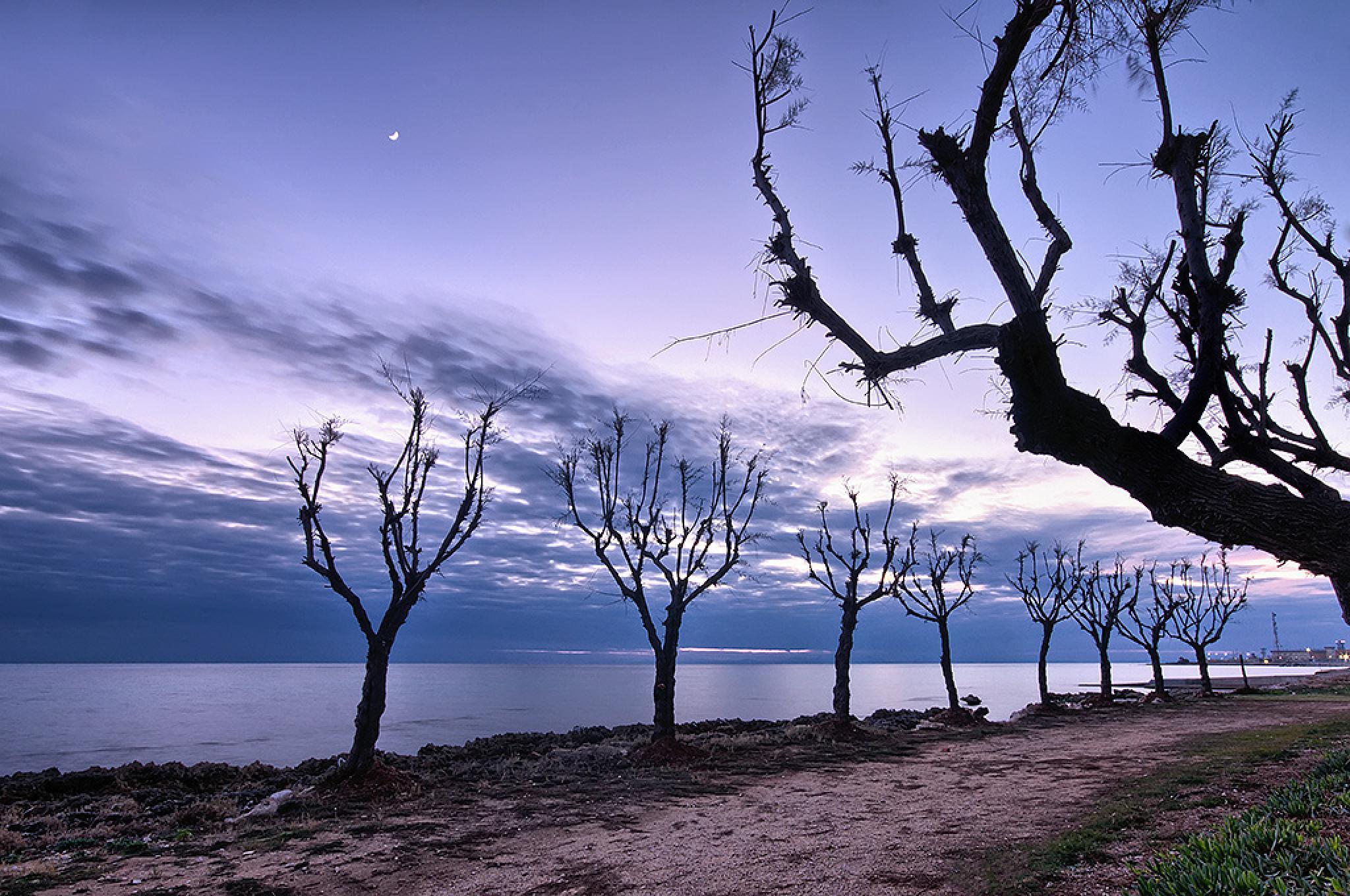 Winter Sea by luigichiriaco