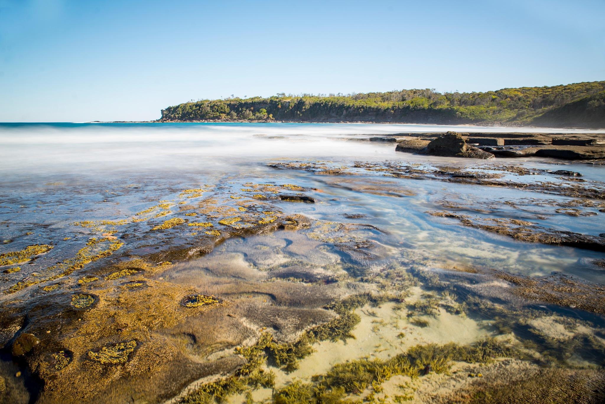 Dolphin Point Australia by Graham Levi