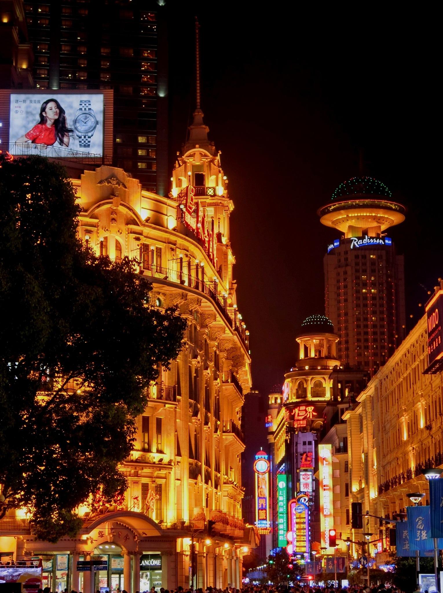 Nanjing Road, Shanghai-3 by pop88123