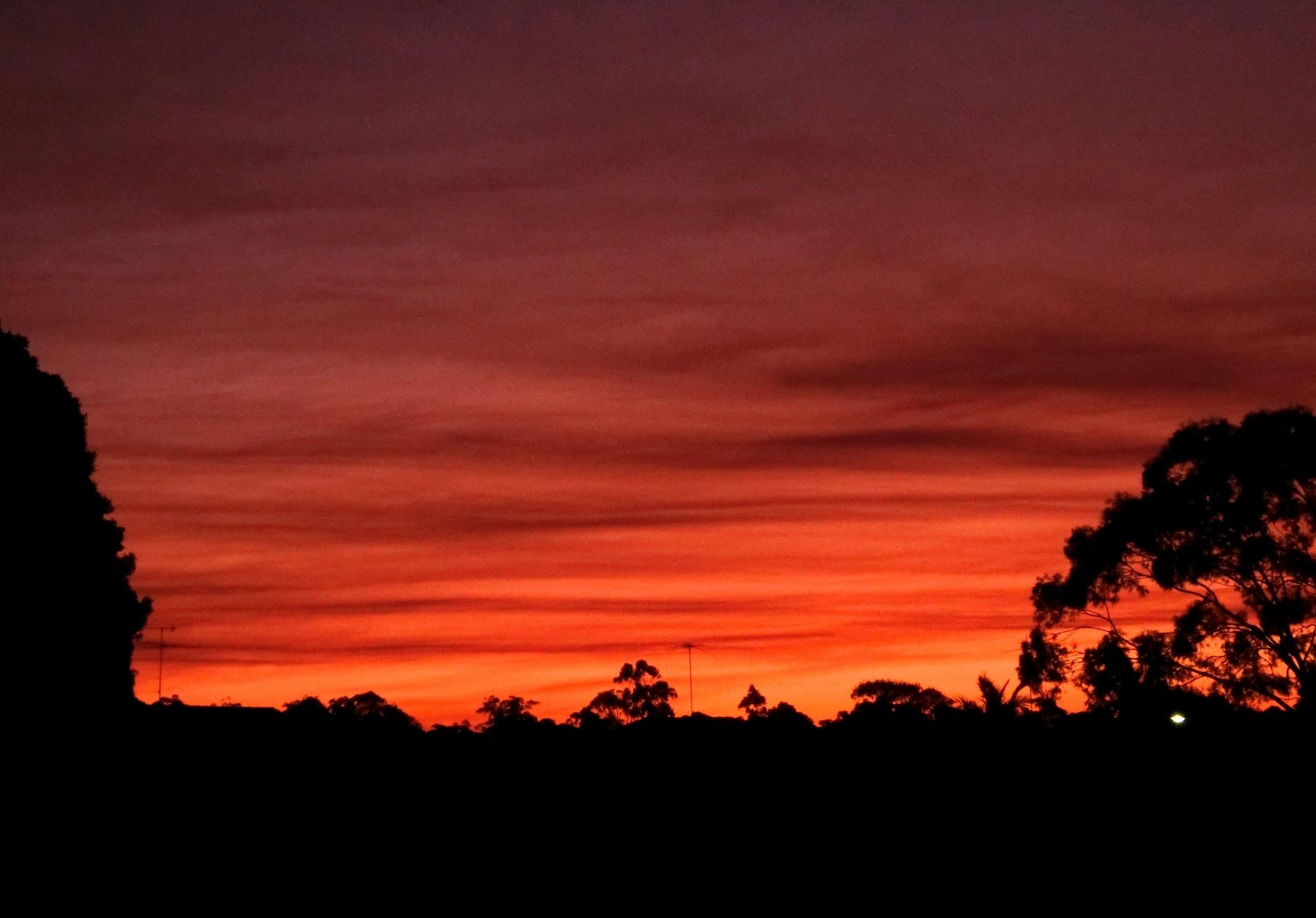 Sunset, Sydney by pop88123
