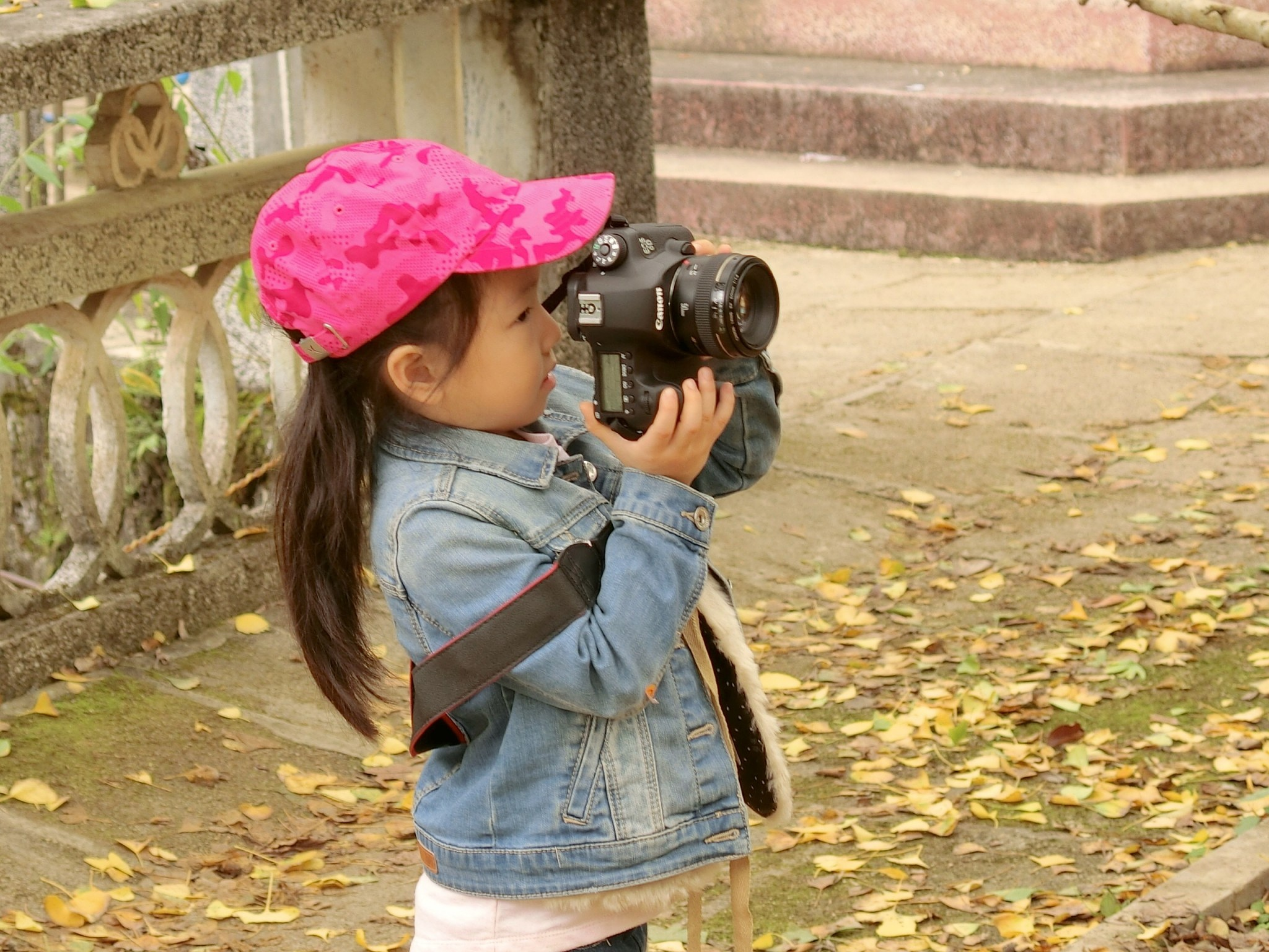 Young photographer, Hat Peak Forest, Nanxiong by pop88123