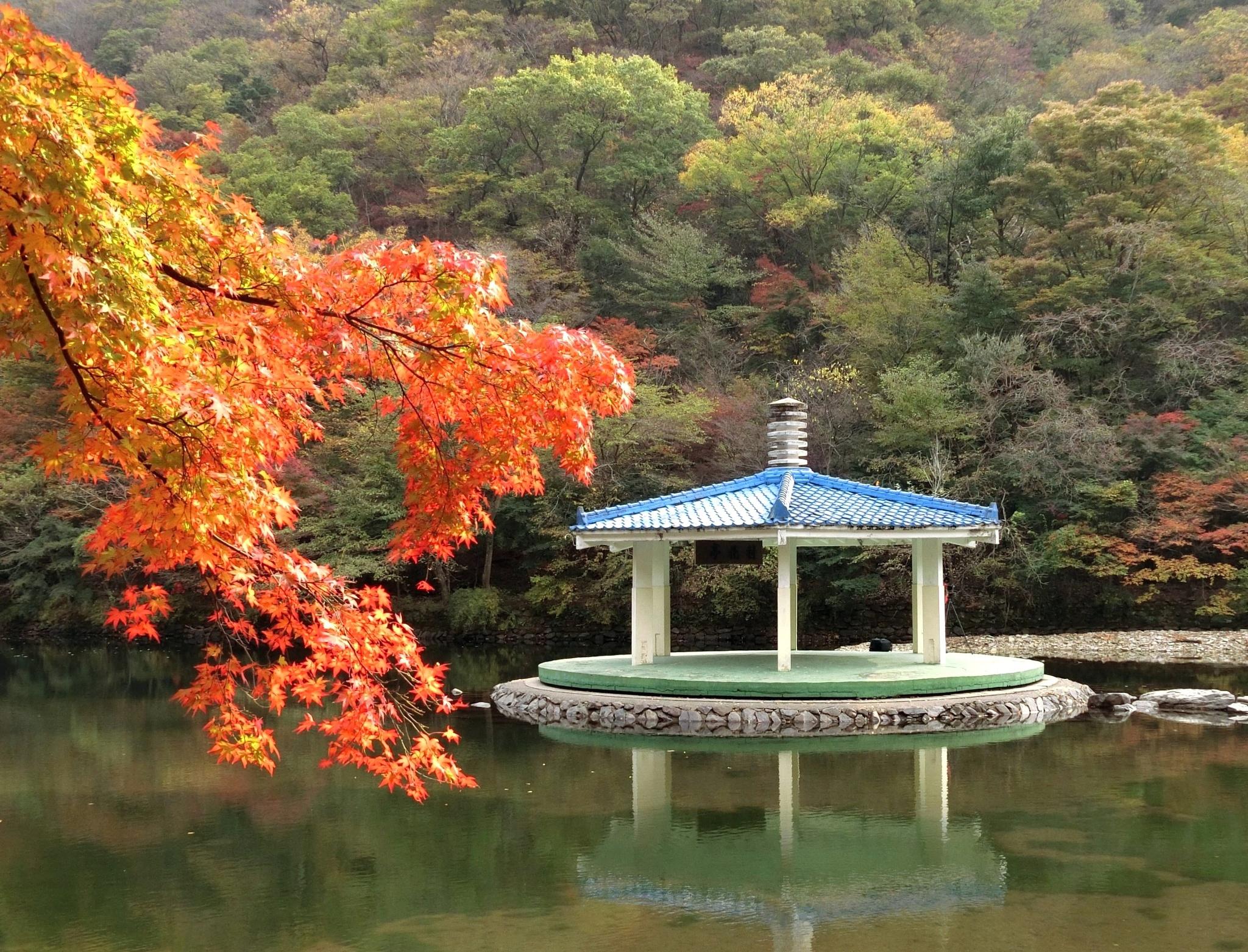 Naejangsan-4, S. Korea by pop88123