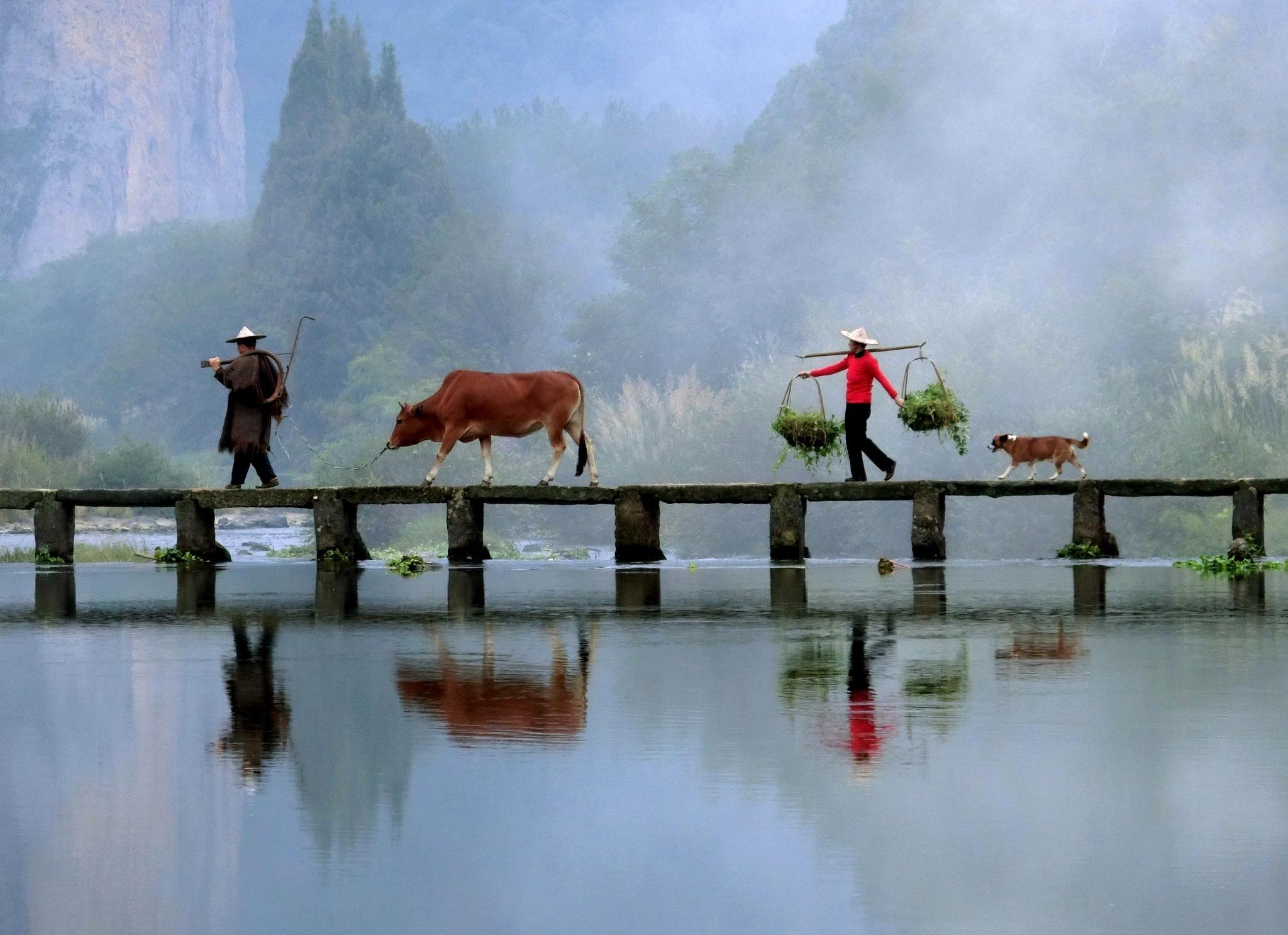 Xiandu Lake-5 by pop88123