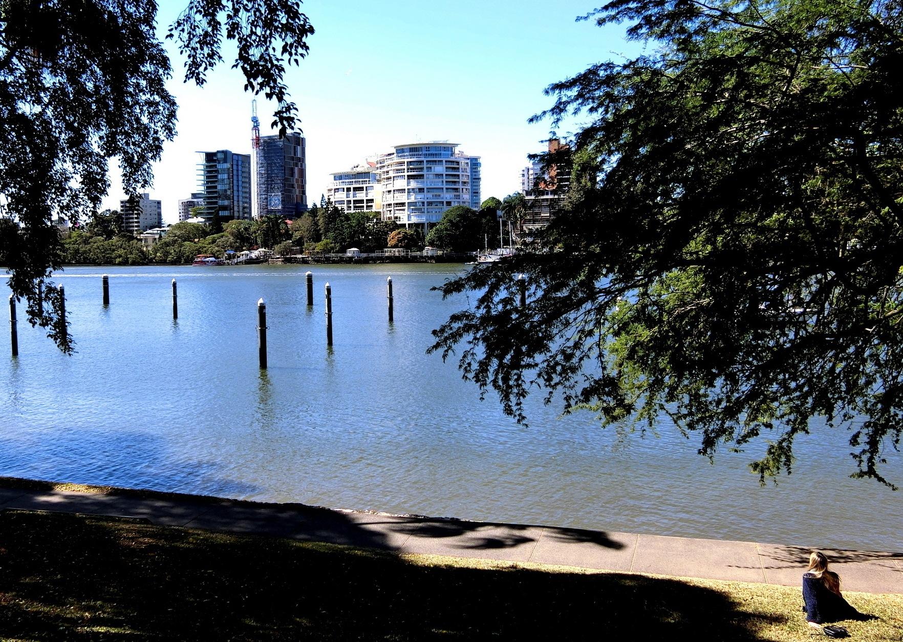 Brisbane Botanic Garden-1 by pop88123