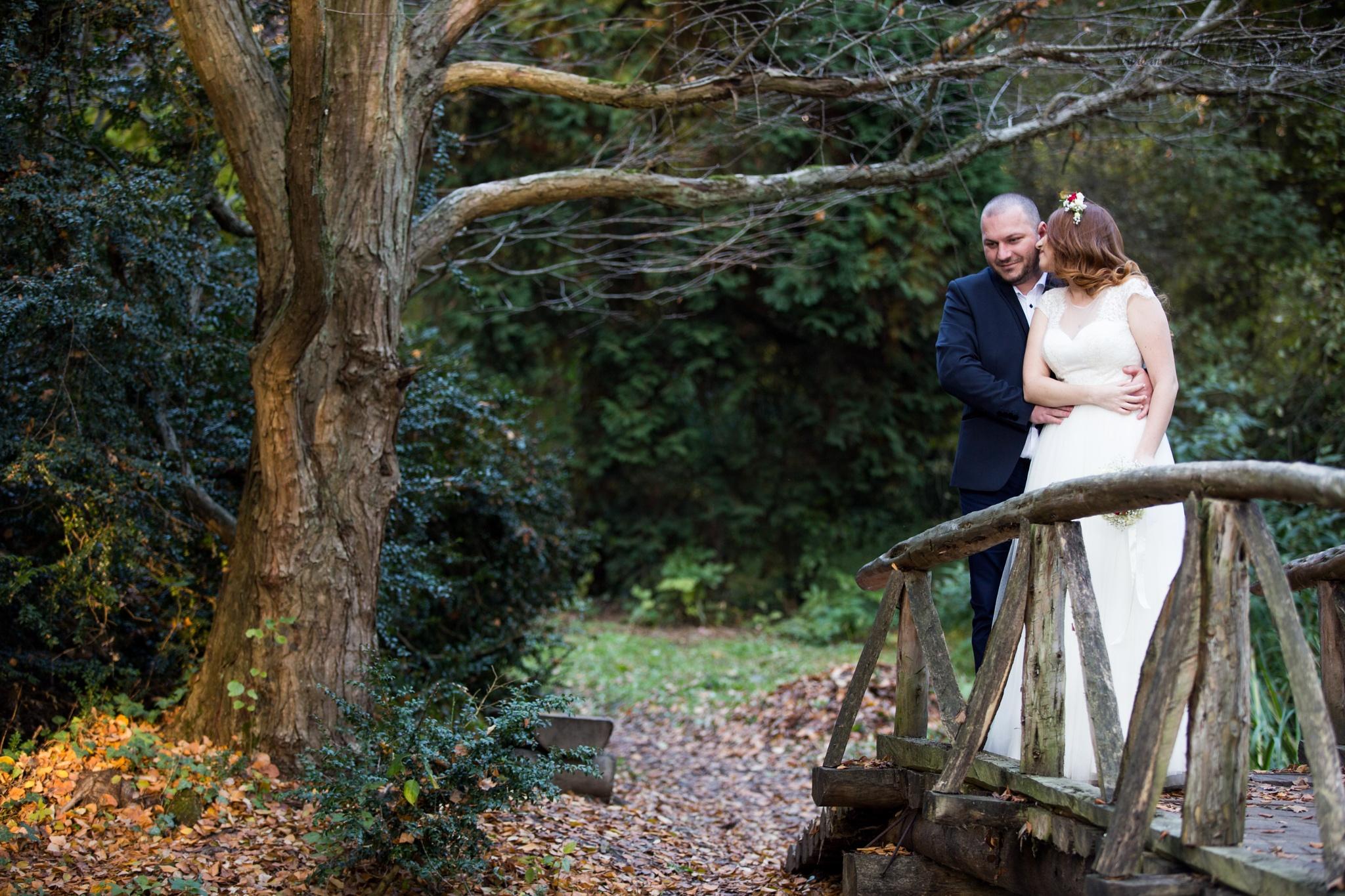 wedding by silviu
