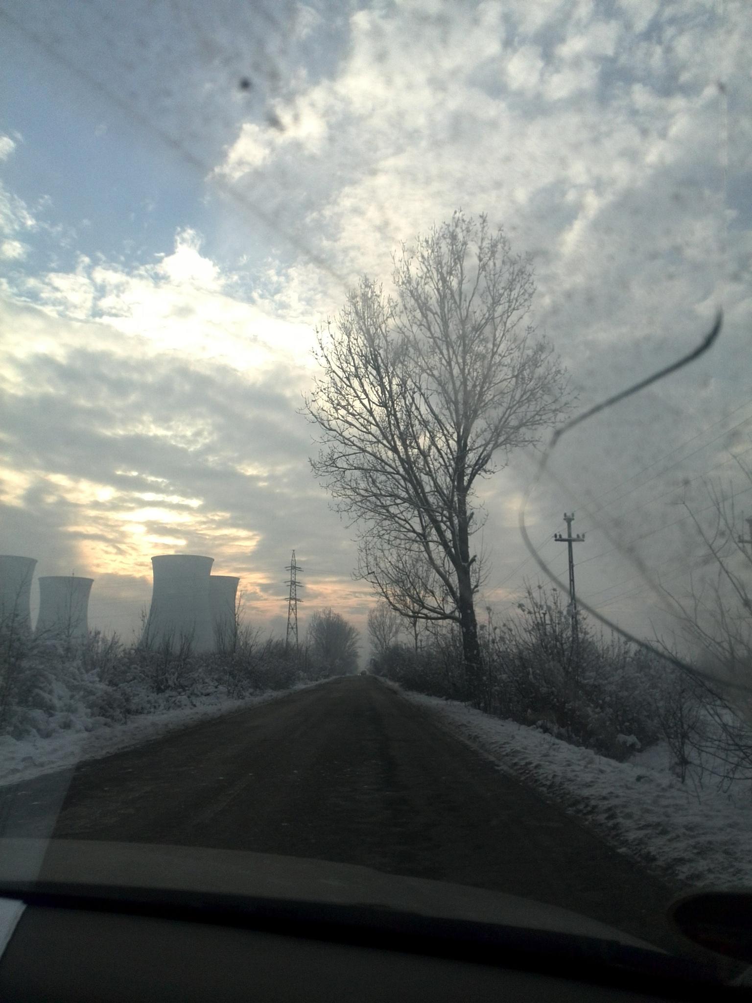 winter by fox787