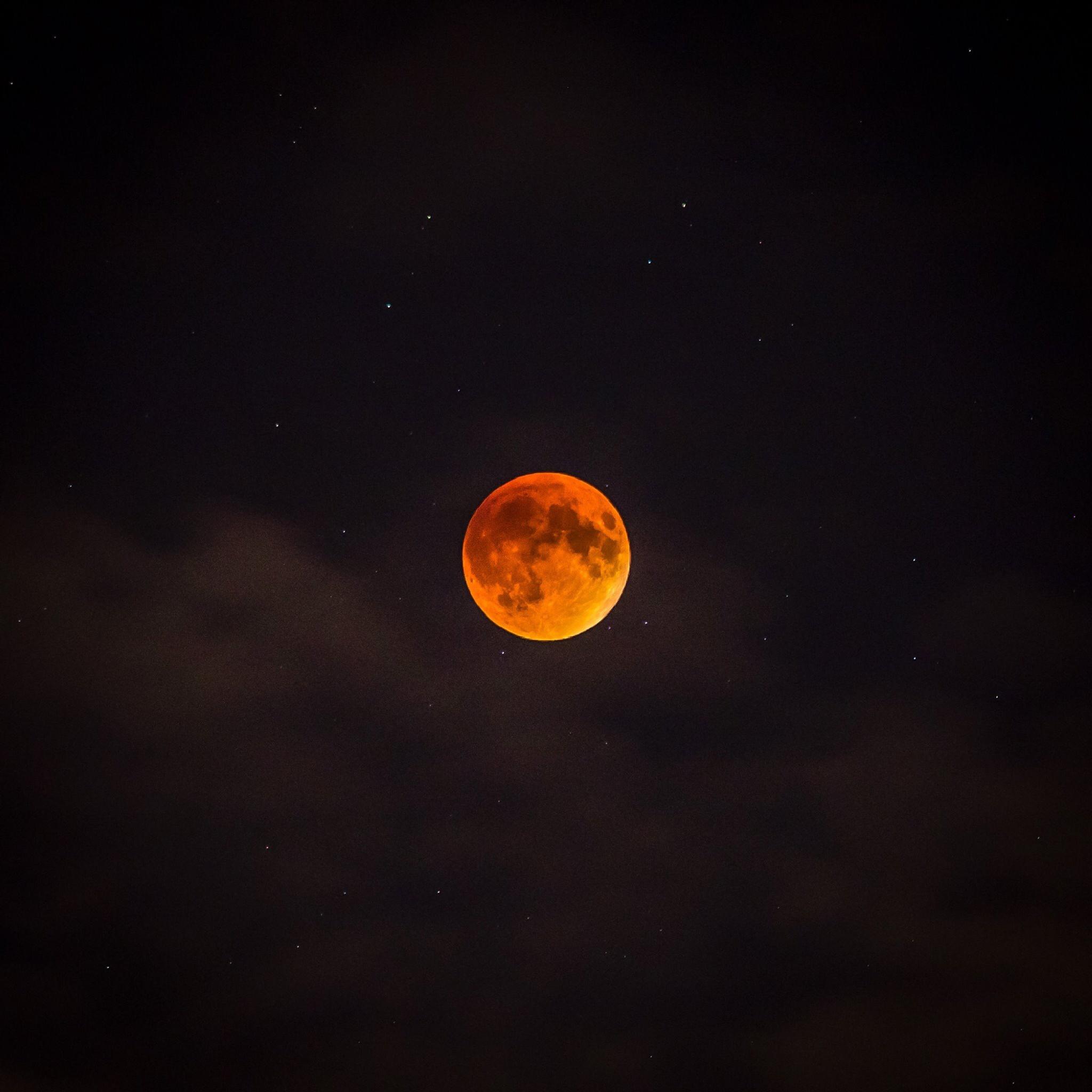 Blood Red Moon by gotshotphoto