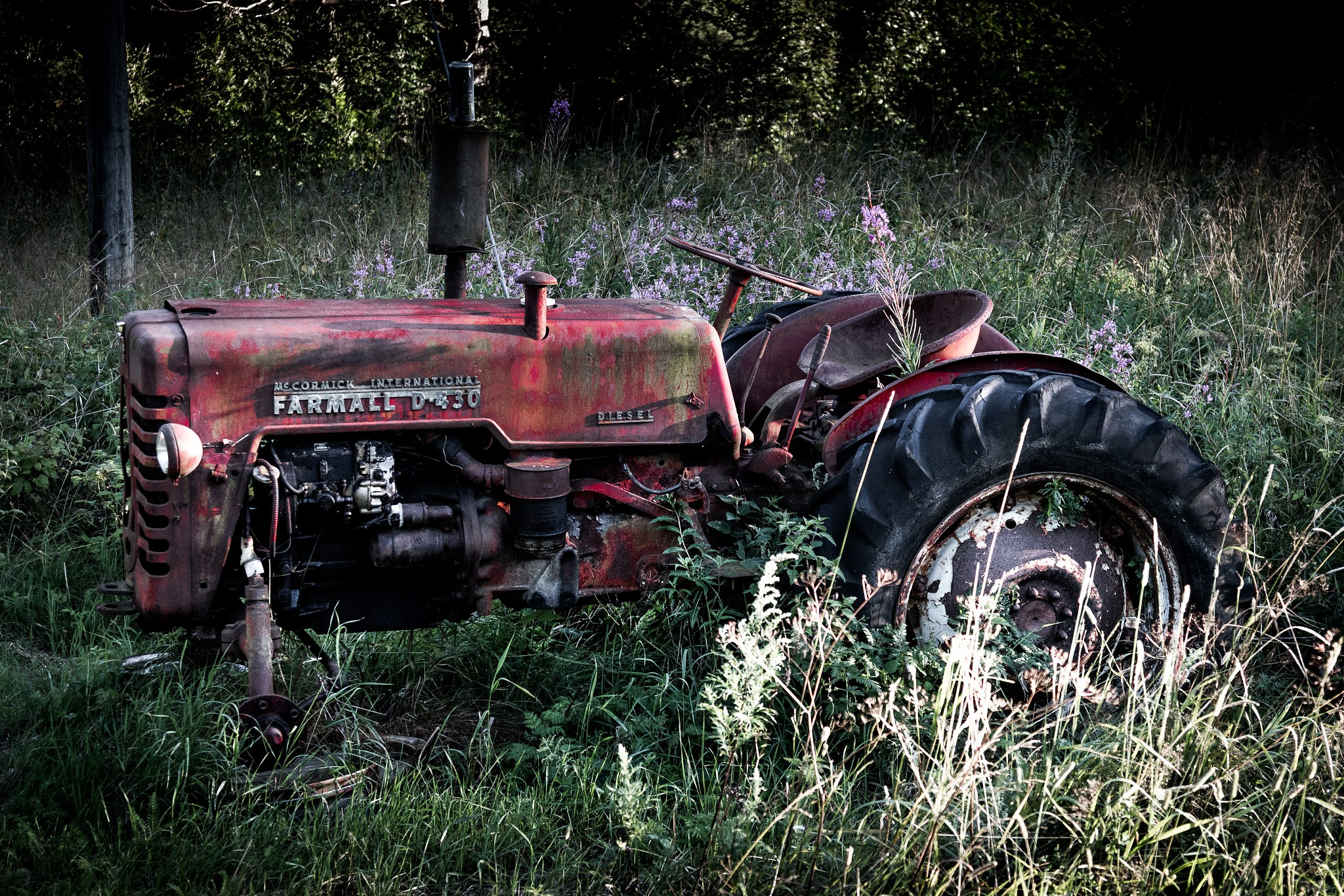Farmall D430 by Jens-Chr.