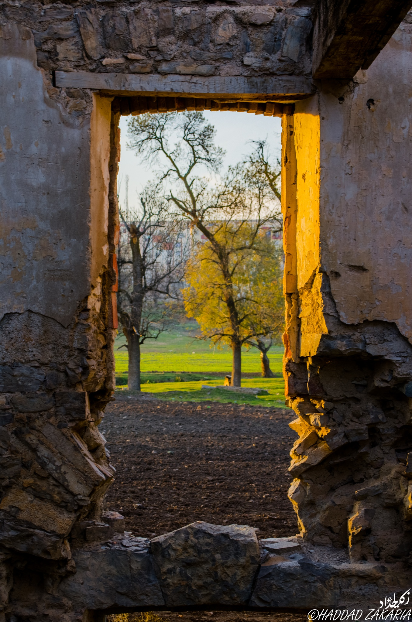 In Frame by Zakaria Haddad
