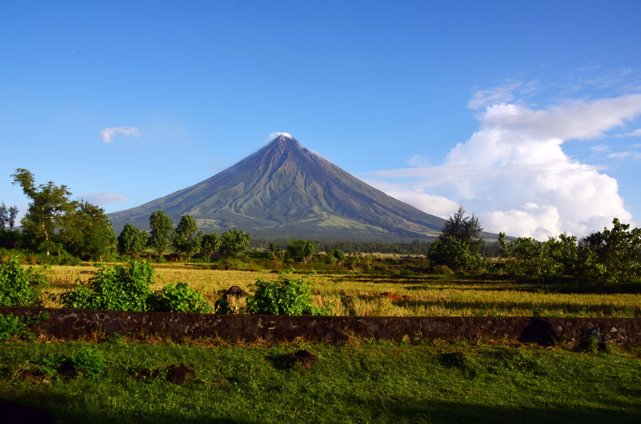 Mayon Volcano- Old favorite by Nelson Sibulo
