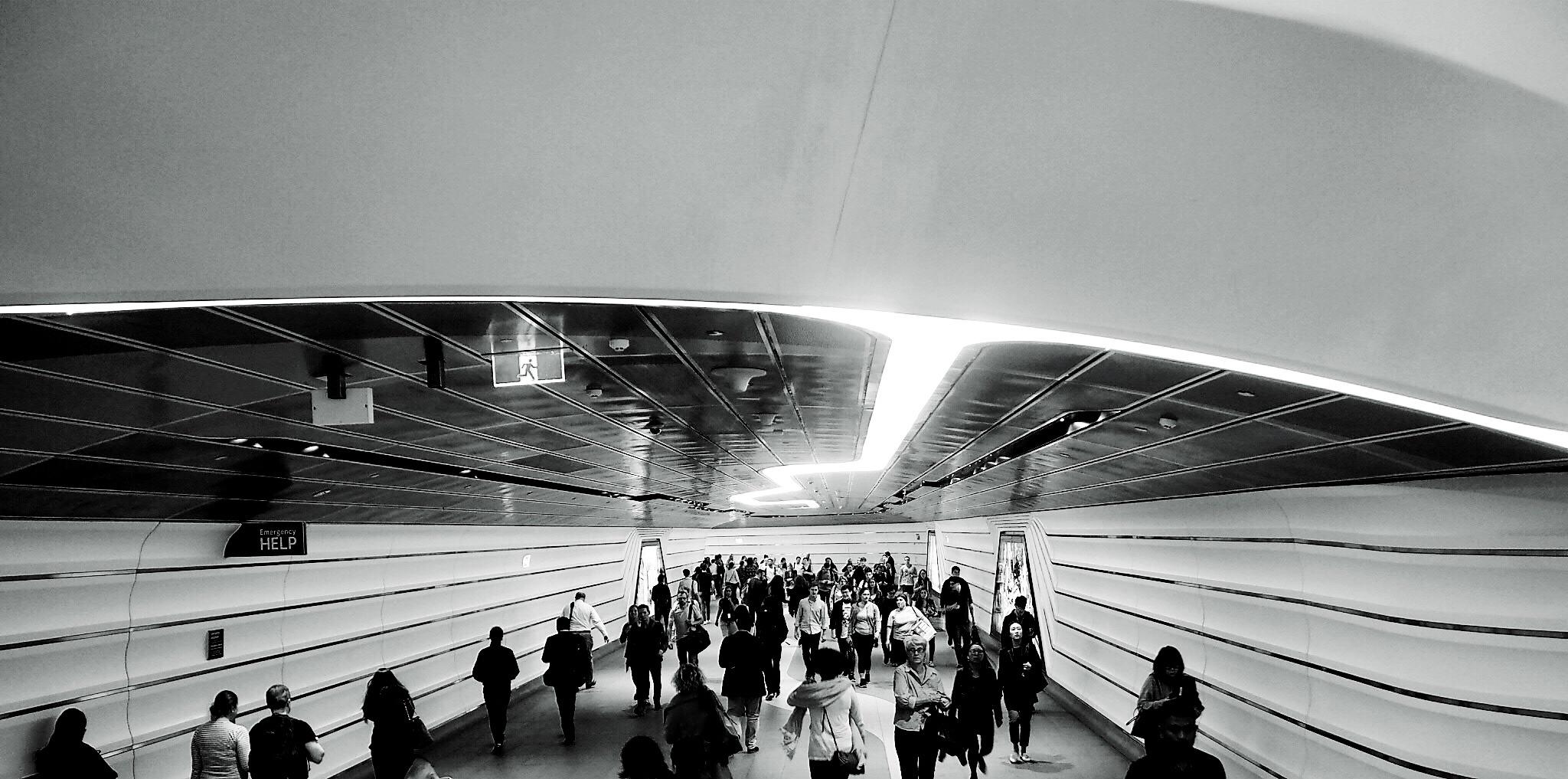 Follow The Light by djskinnylatte