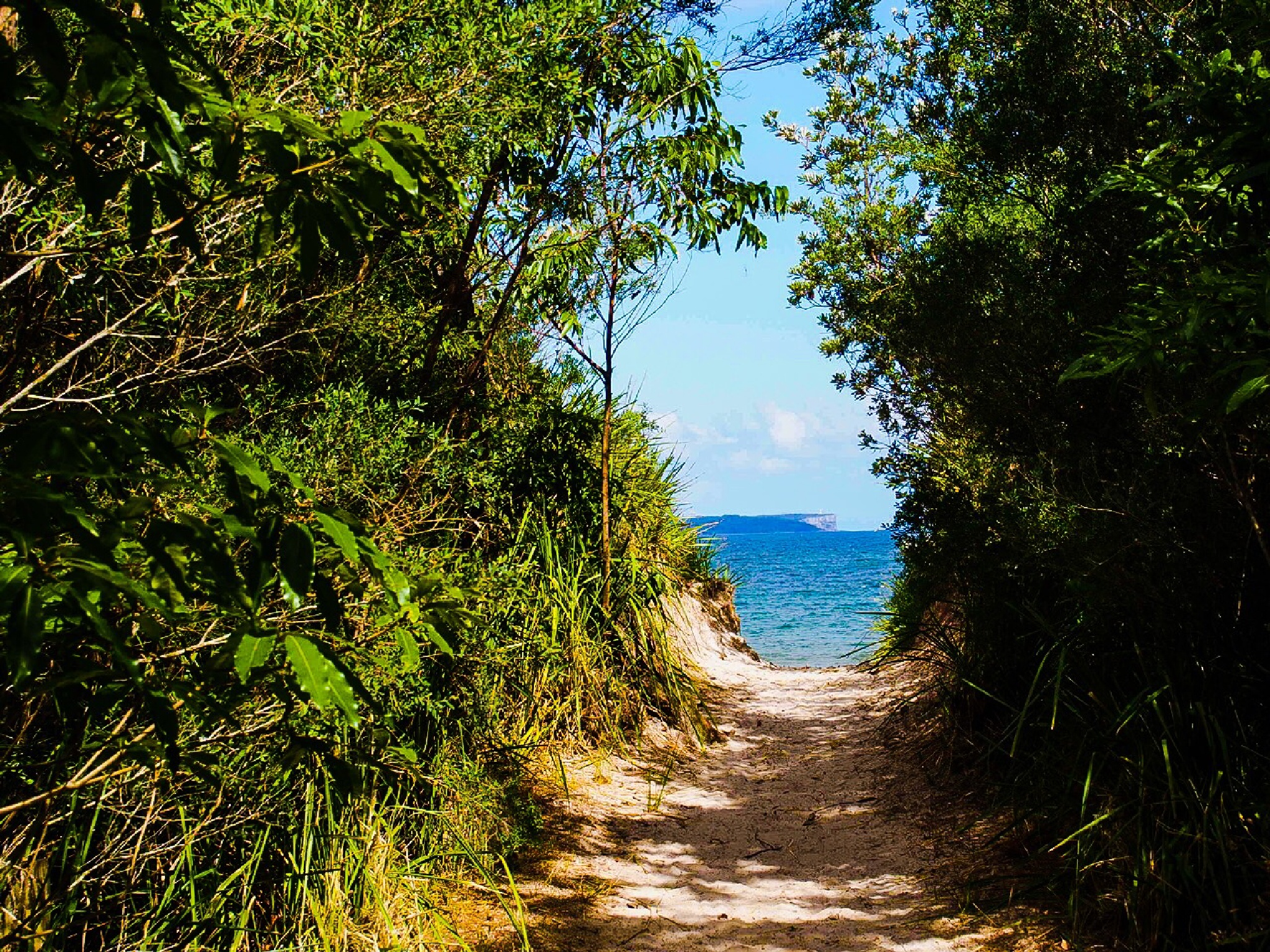 To the beach ... by djskinnylatte