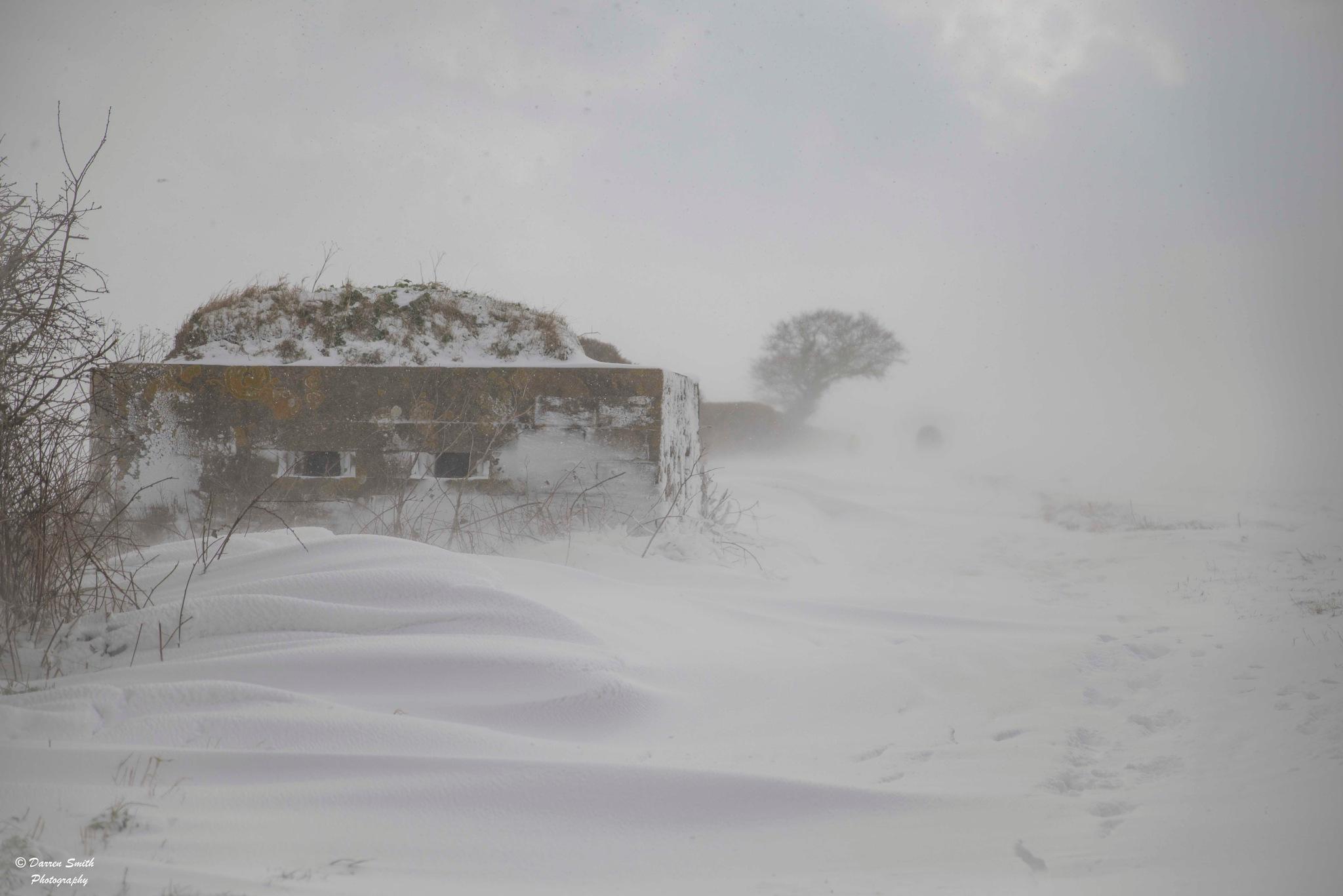 Blizzard by Darren Smith