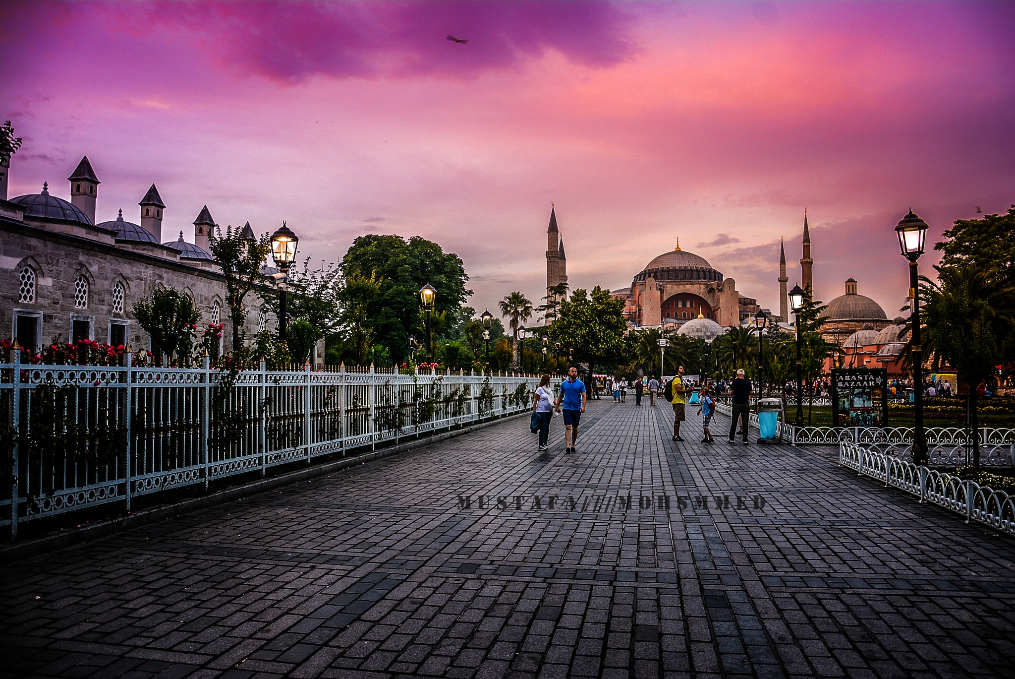 Aya Sofia by Mustfa Mohammed