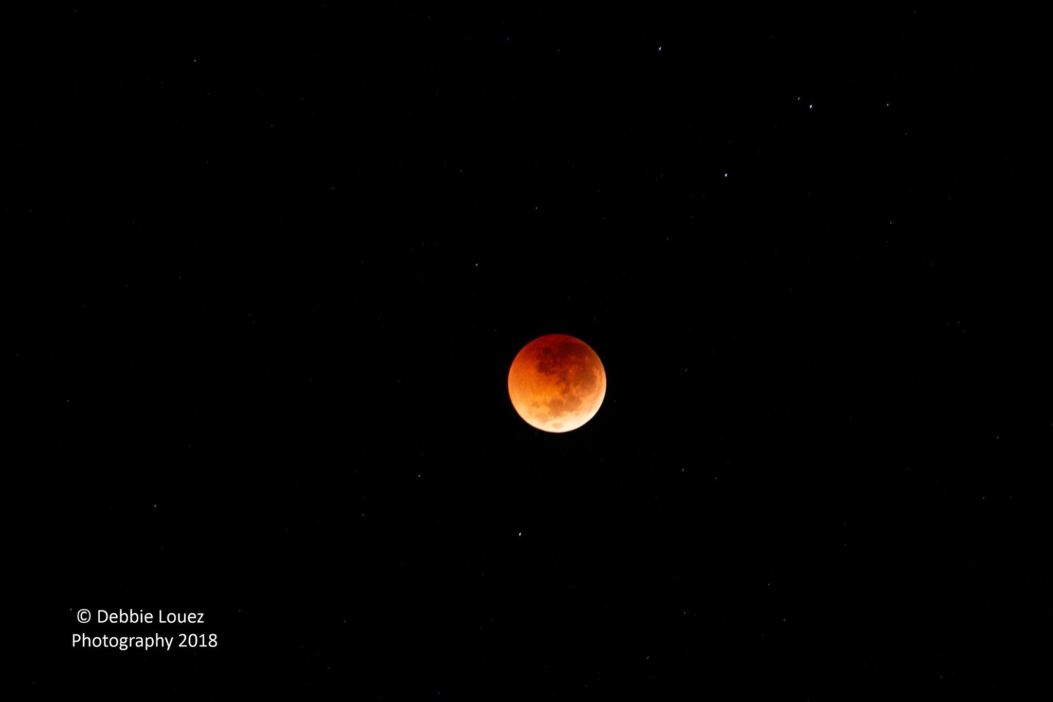 Blood Moon by Debbie Louez