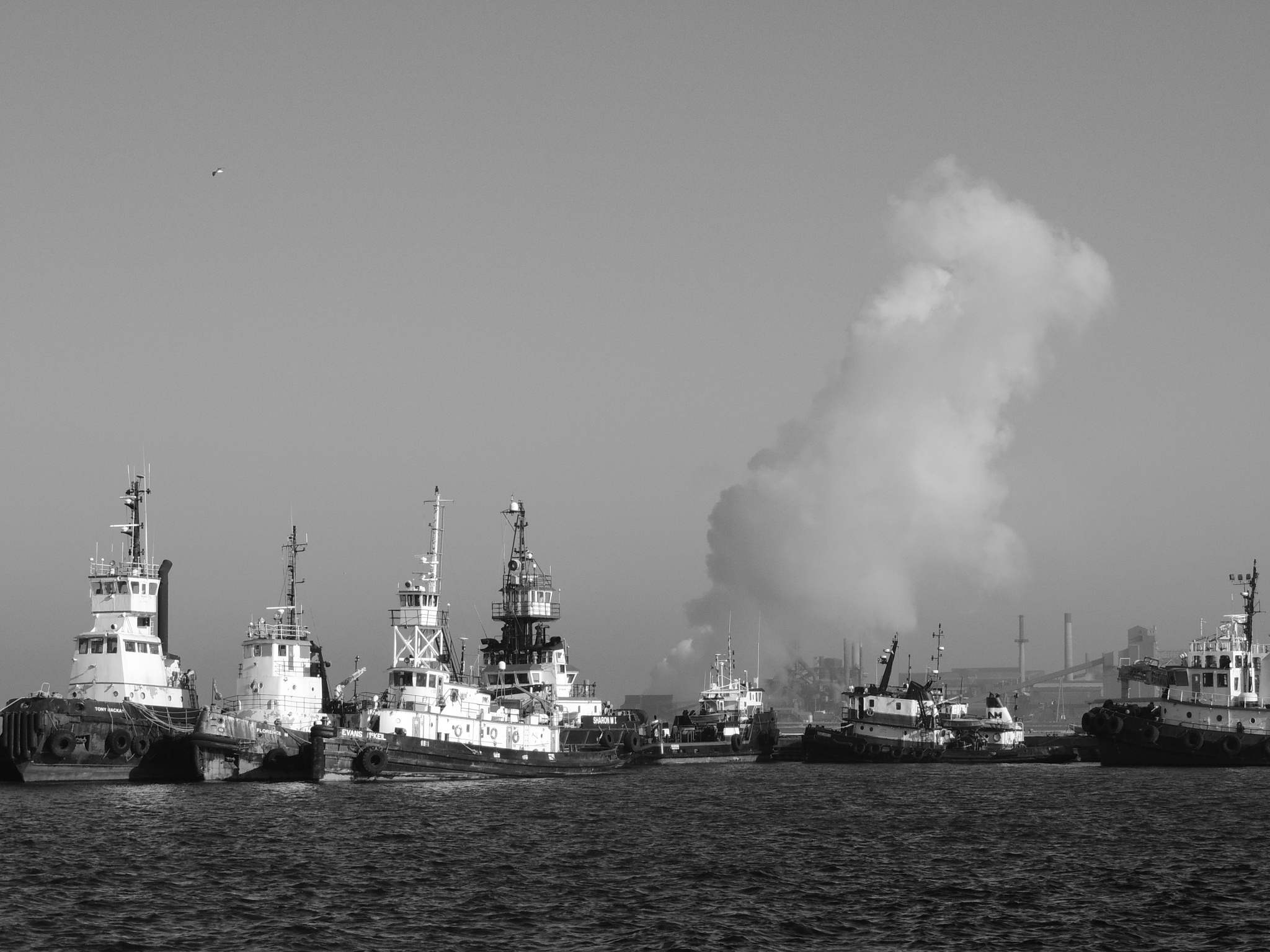 """HARBOR SCENE IN THE  """"HAMMER """" by M. Wryter"""