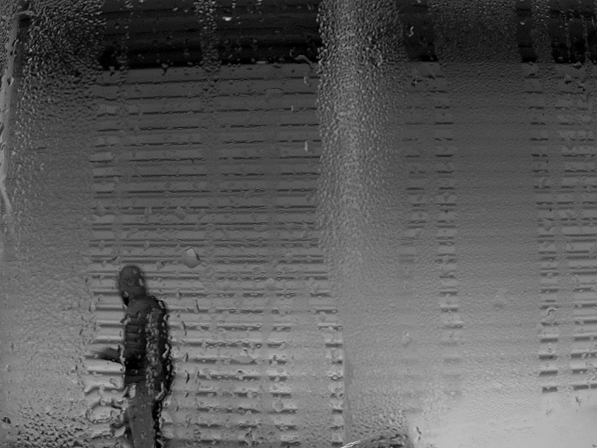 Alone! by Demet Alper